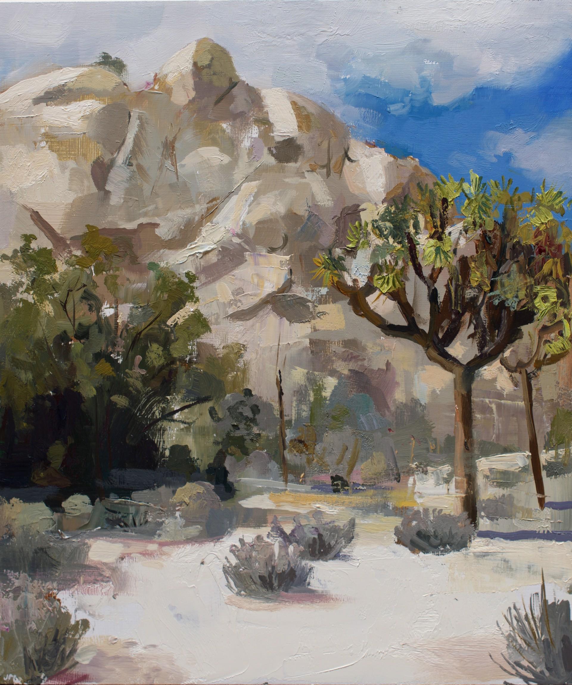 Joshua Tree by Jeremy Miranda