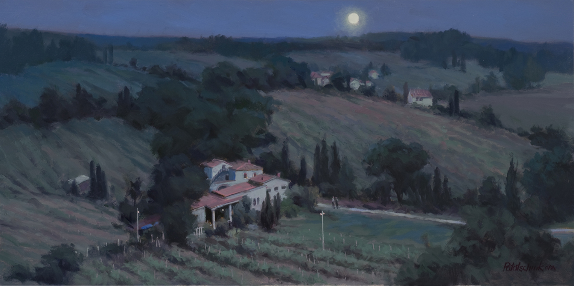 Italian Vineyard by John Pototschnik