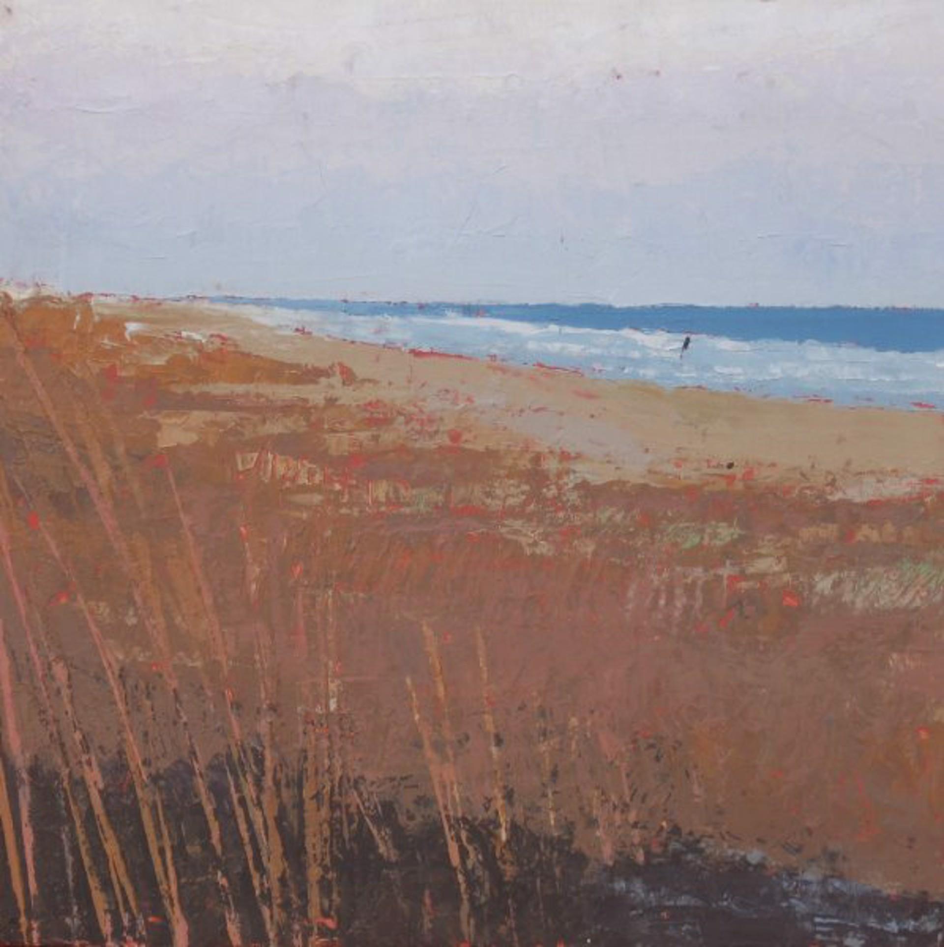 Land, Water, Sky #24 by Richard Garrison