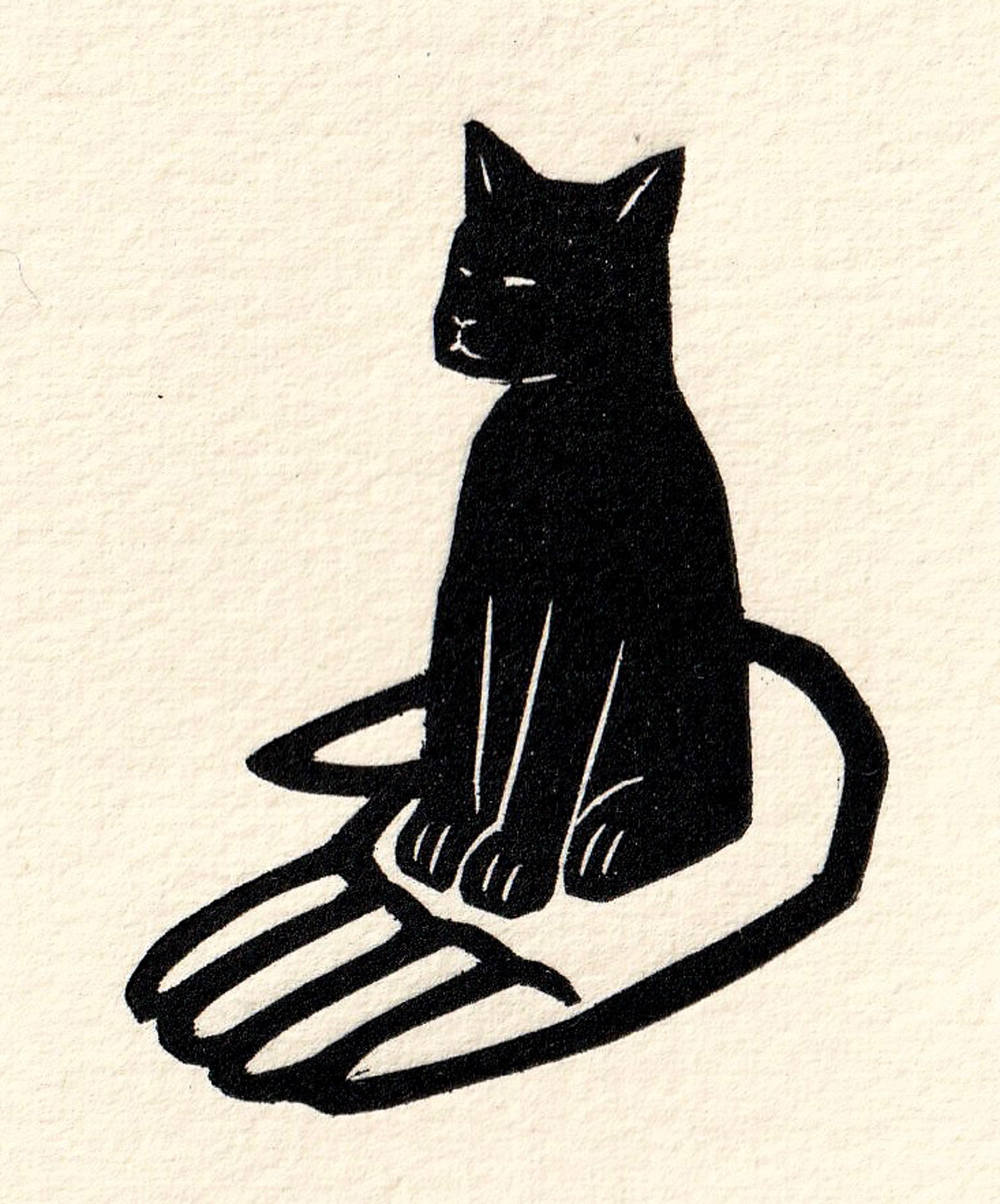 Gato Parado Mano by Alberto Cruz