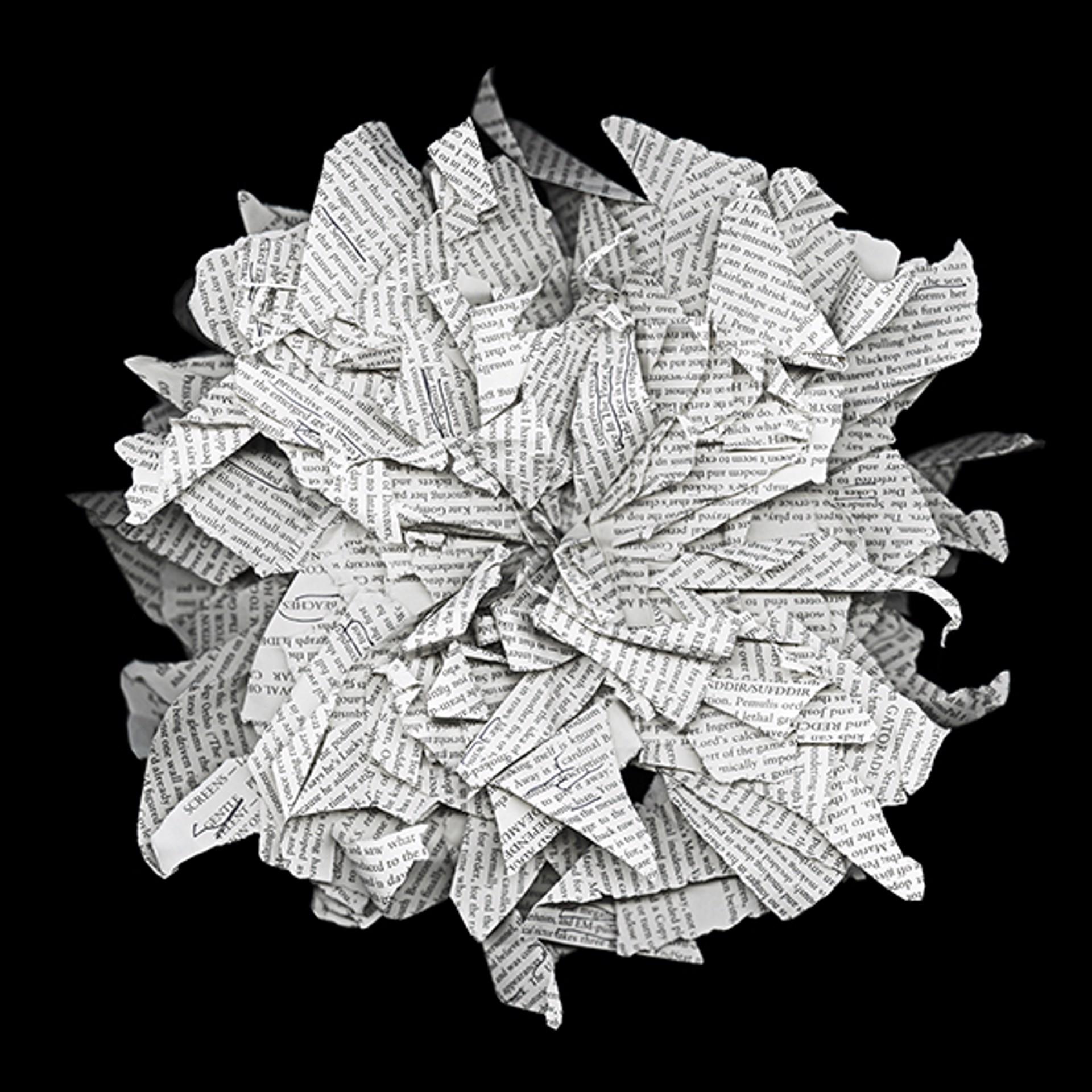 Freeform Origami by Cara Barer
