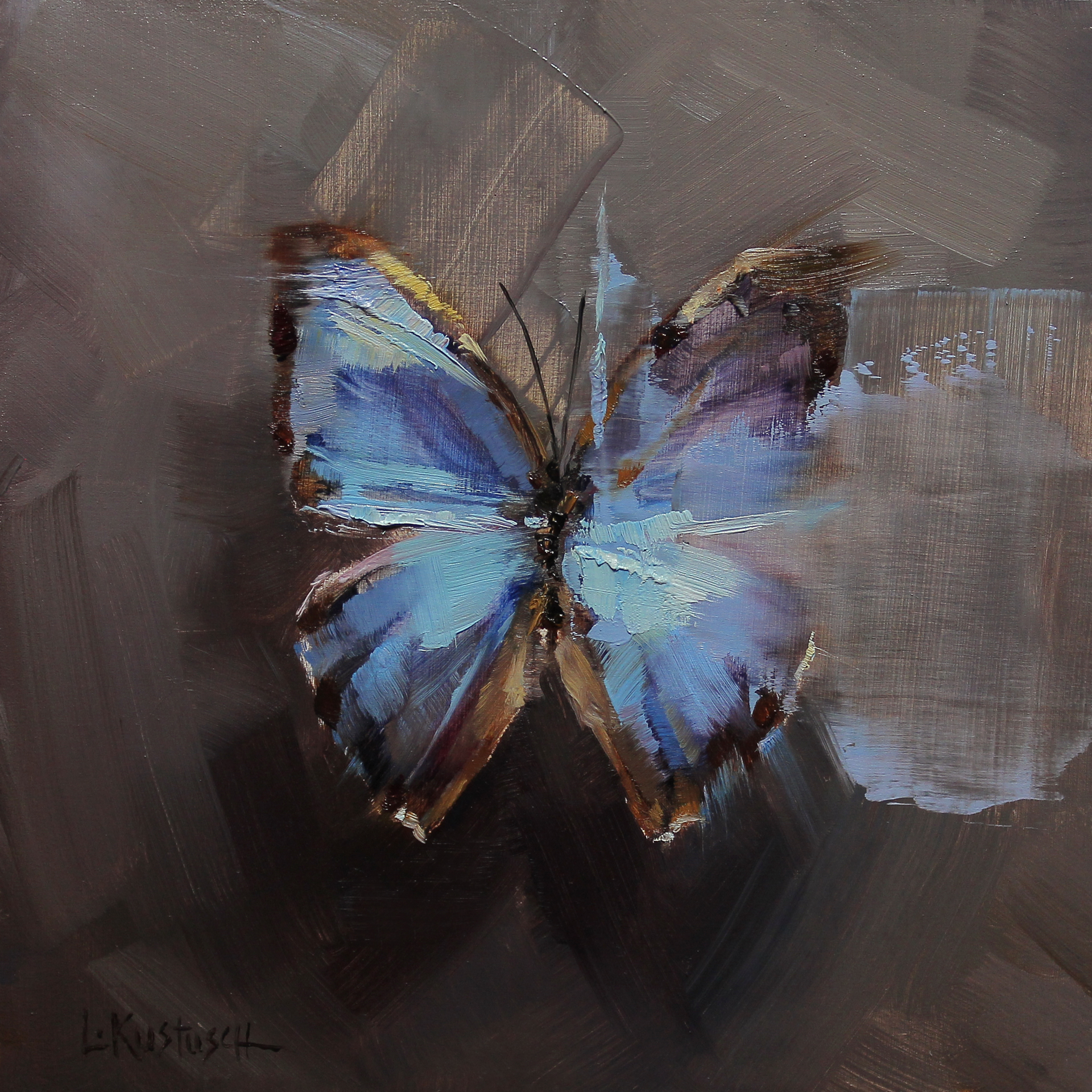 The Blue Morpho by Lindsey Kustusch