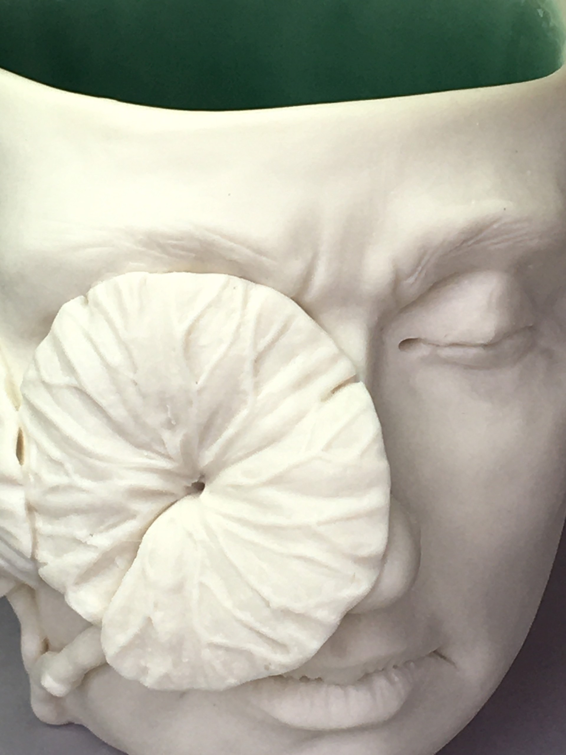 """""""Flora Cup I"""" (two leaves left side, eyes closed) by Adrian Arleo"""