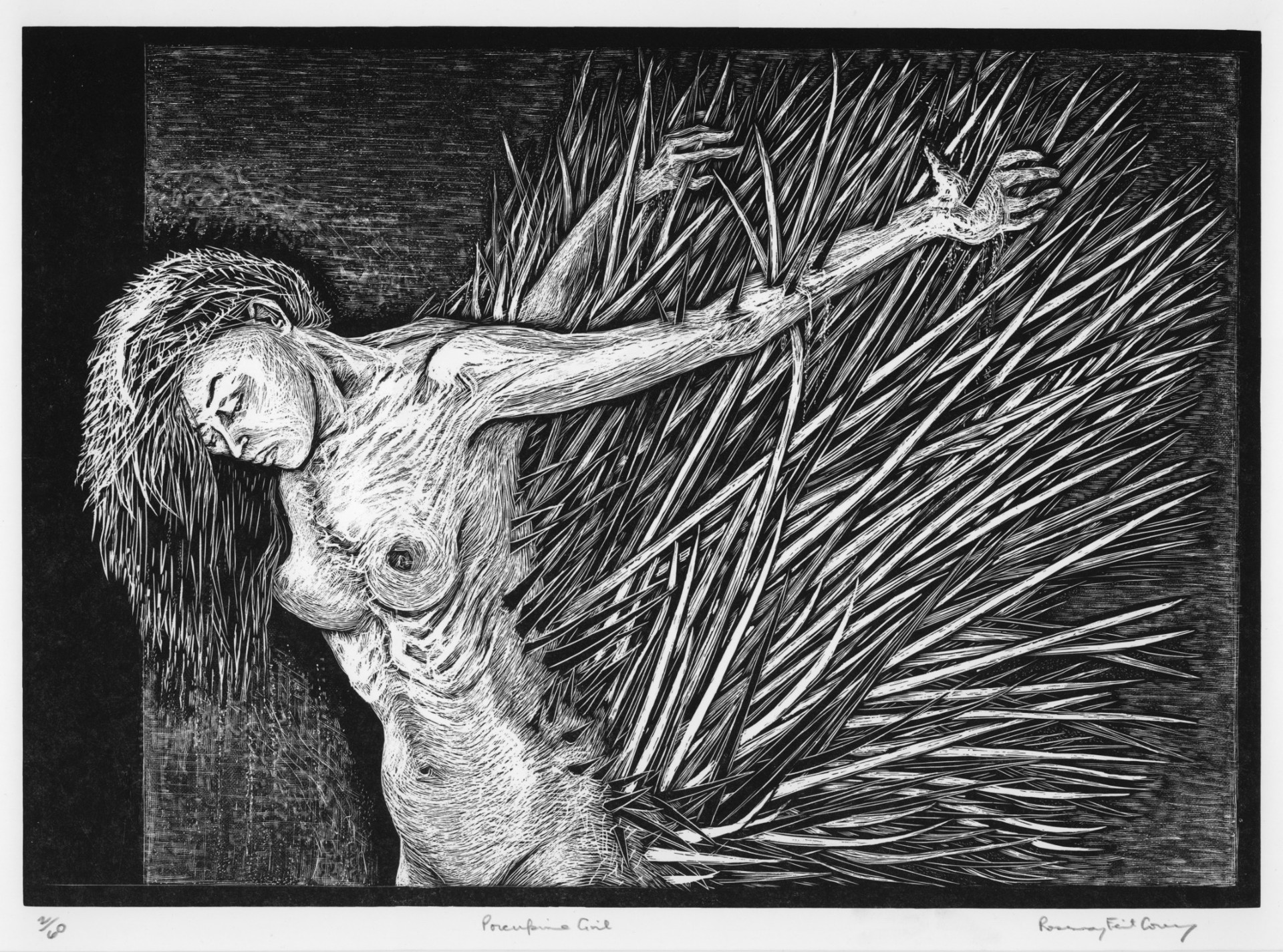 Porcupine Girl (impaled) by Rosemary Feit Covey