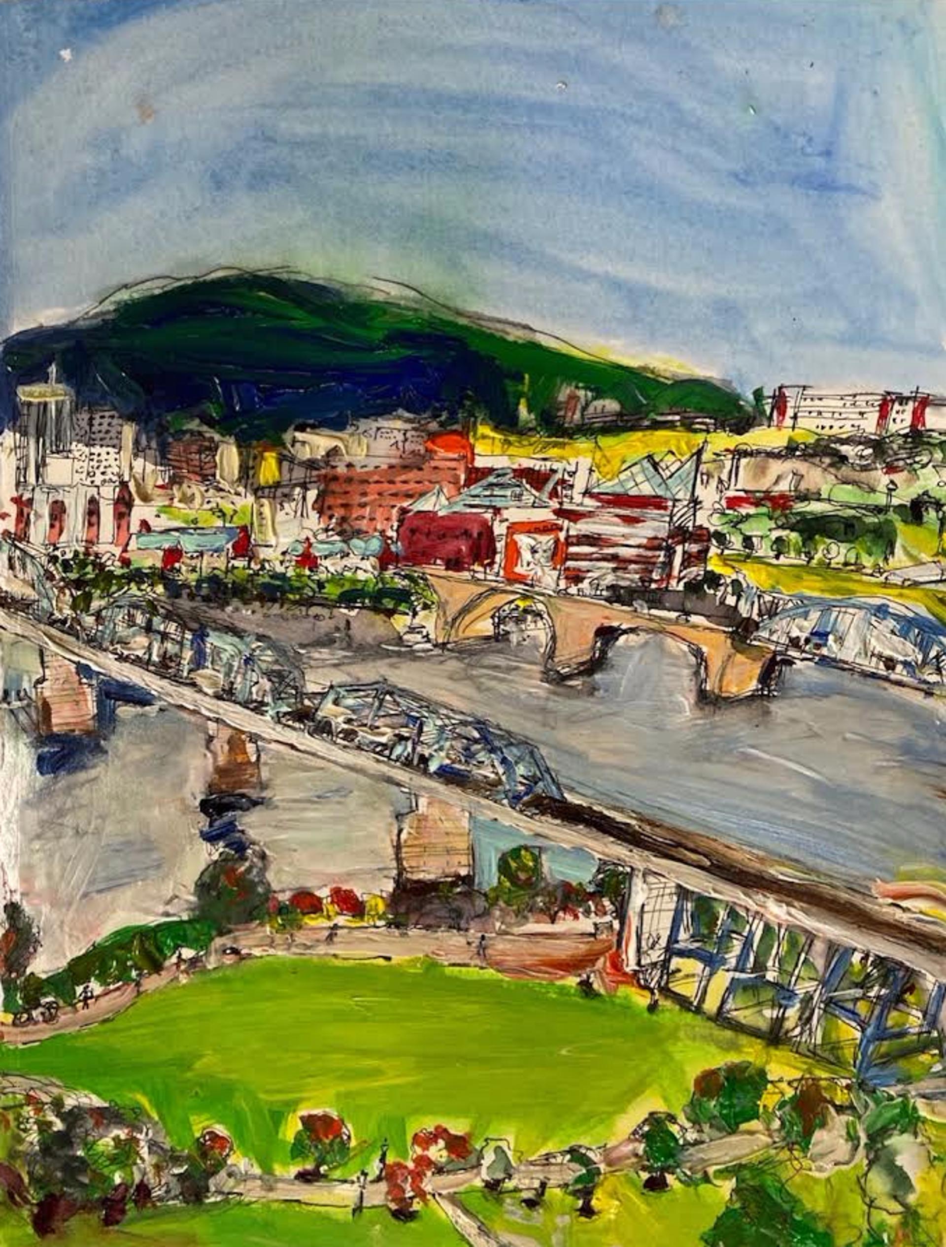 Aerial View of Walnut Street Bridge 1 by Ana Guzman