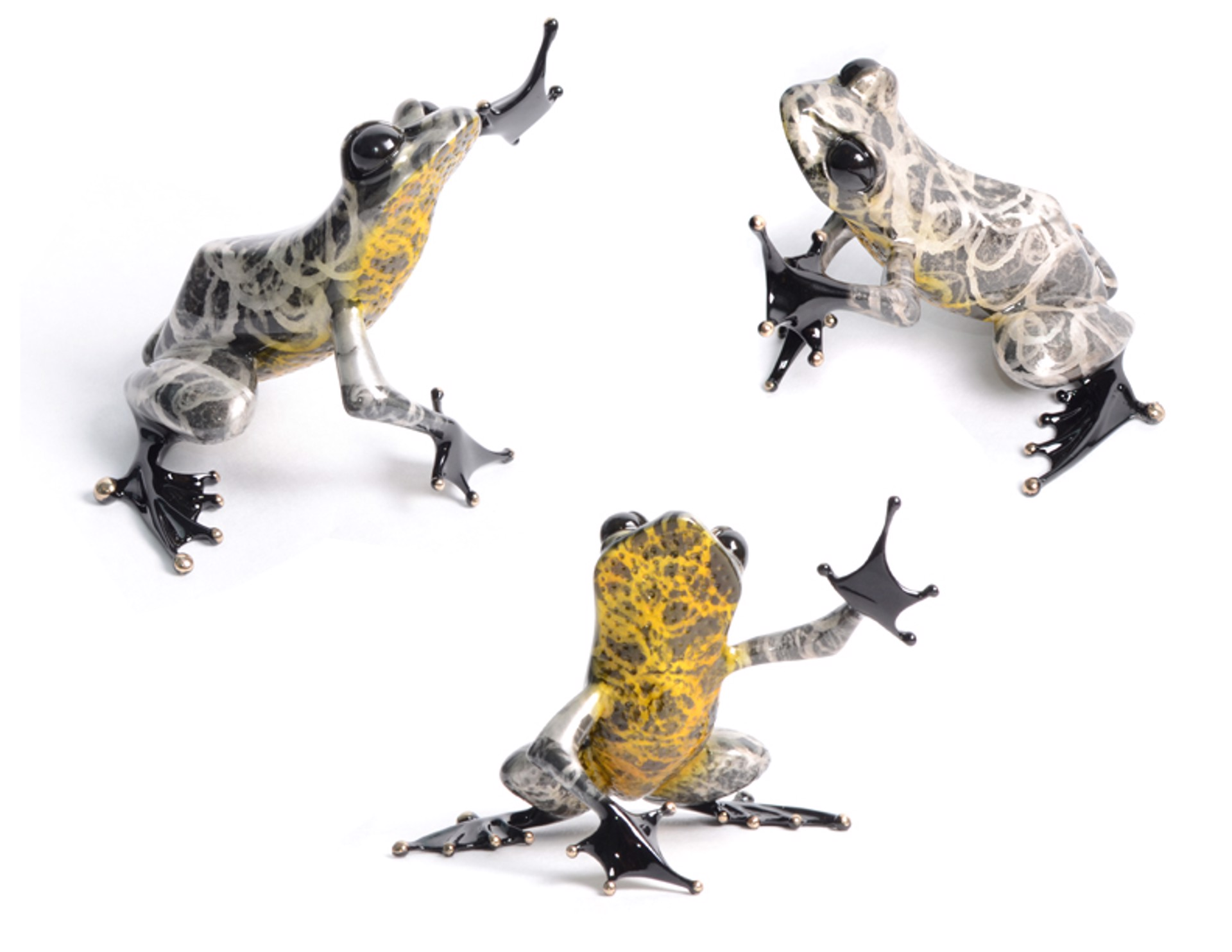 Firecracker Show Frog - Sterling BF185S2 by Tim Cotterill