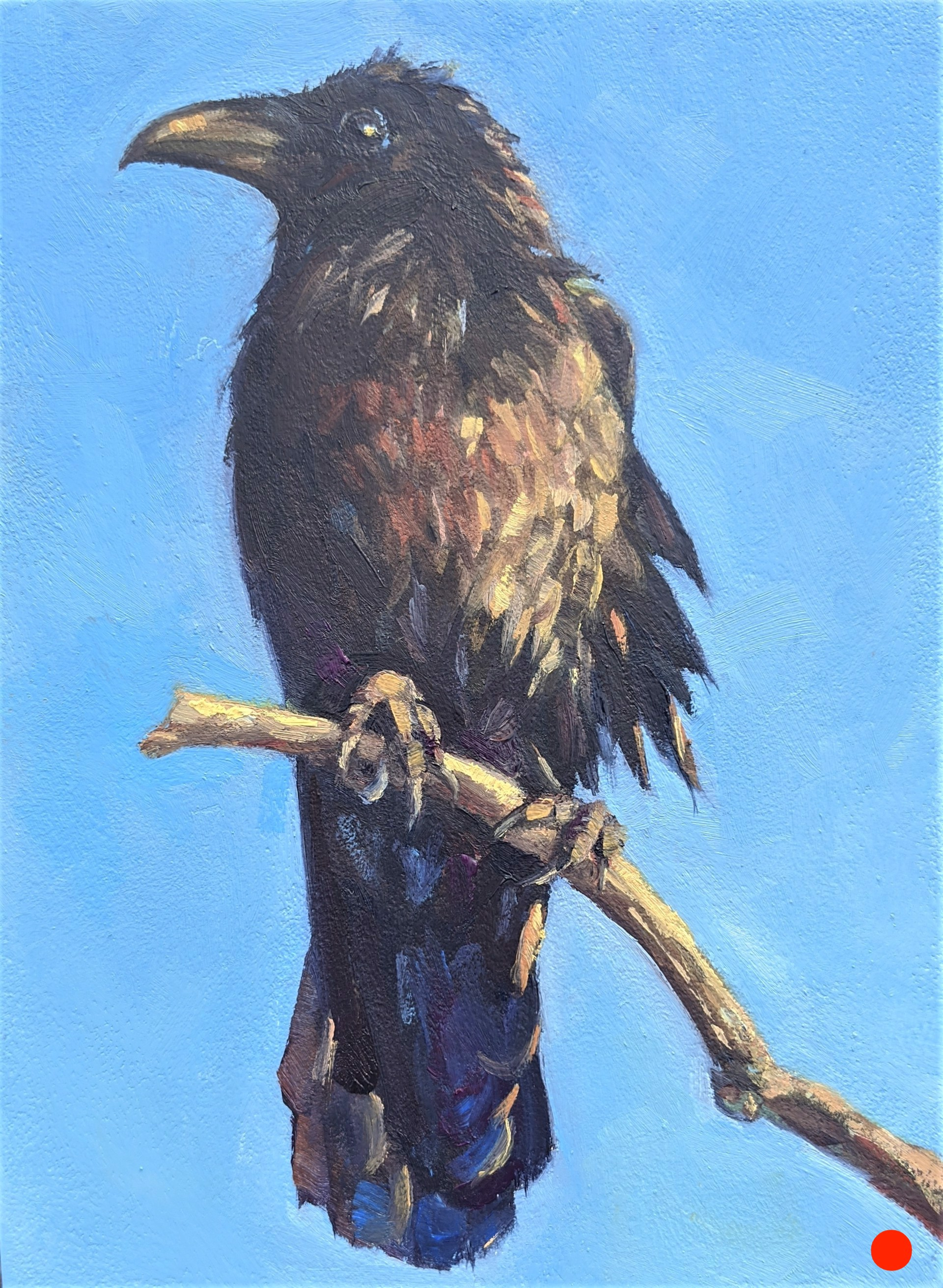 Charlie's Raven by Casey Cheuvront