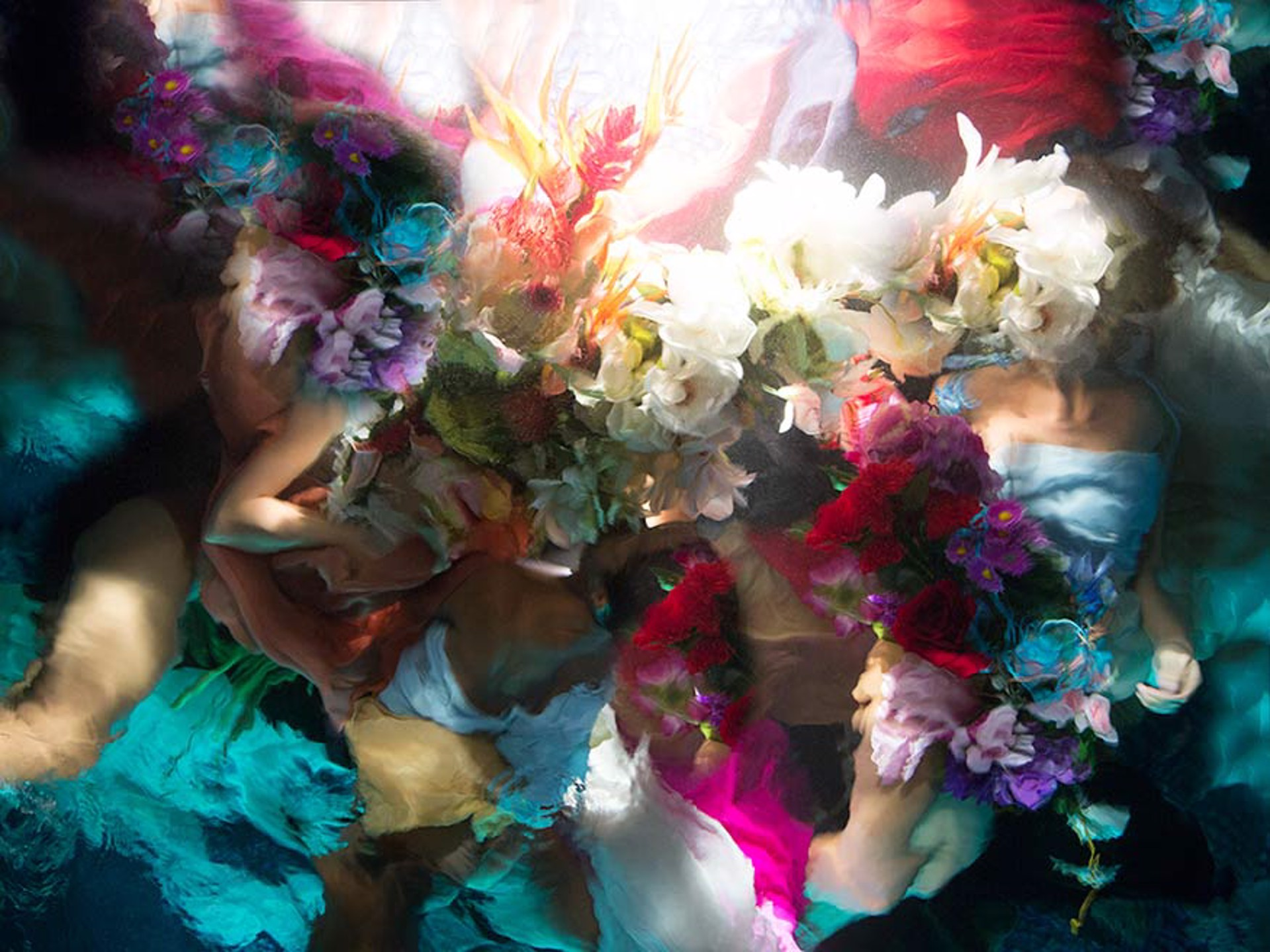 Flower Bodies 3/3 by Christy Lee Rogers