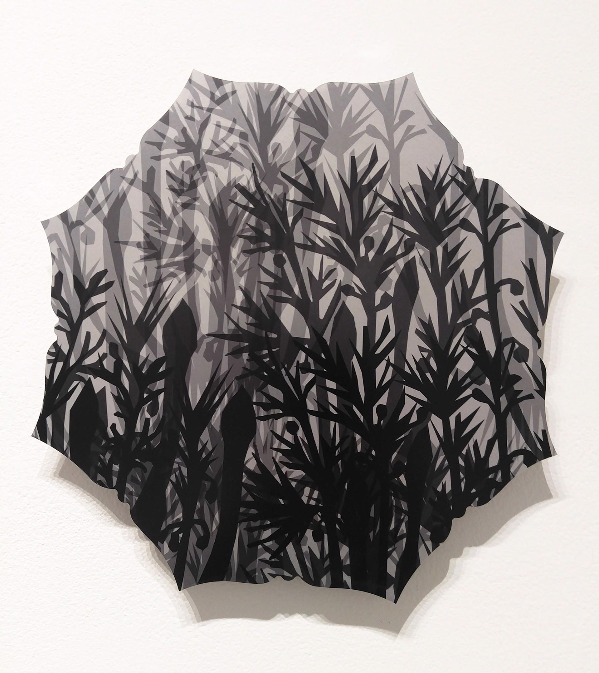 Asparagus by Pantea Karimi