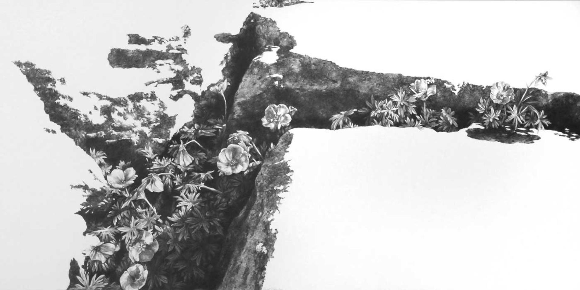 The Fertile Rock III by Robin Cole