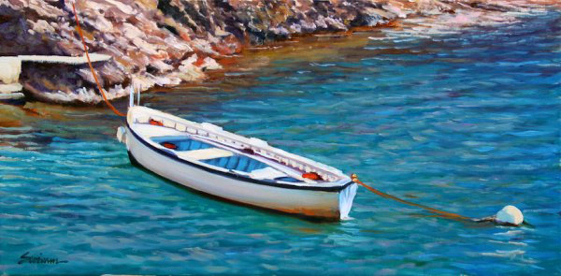Swimm: Praiano Cove by Tom Swimm