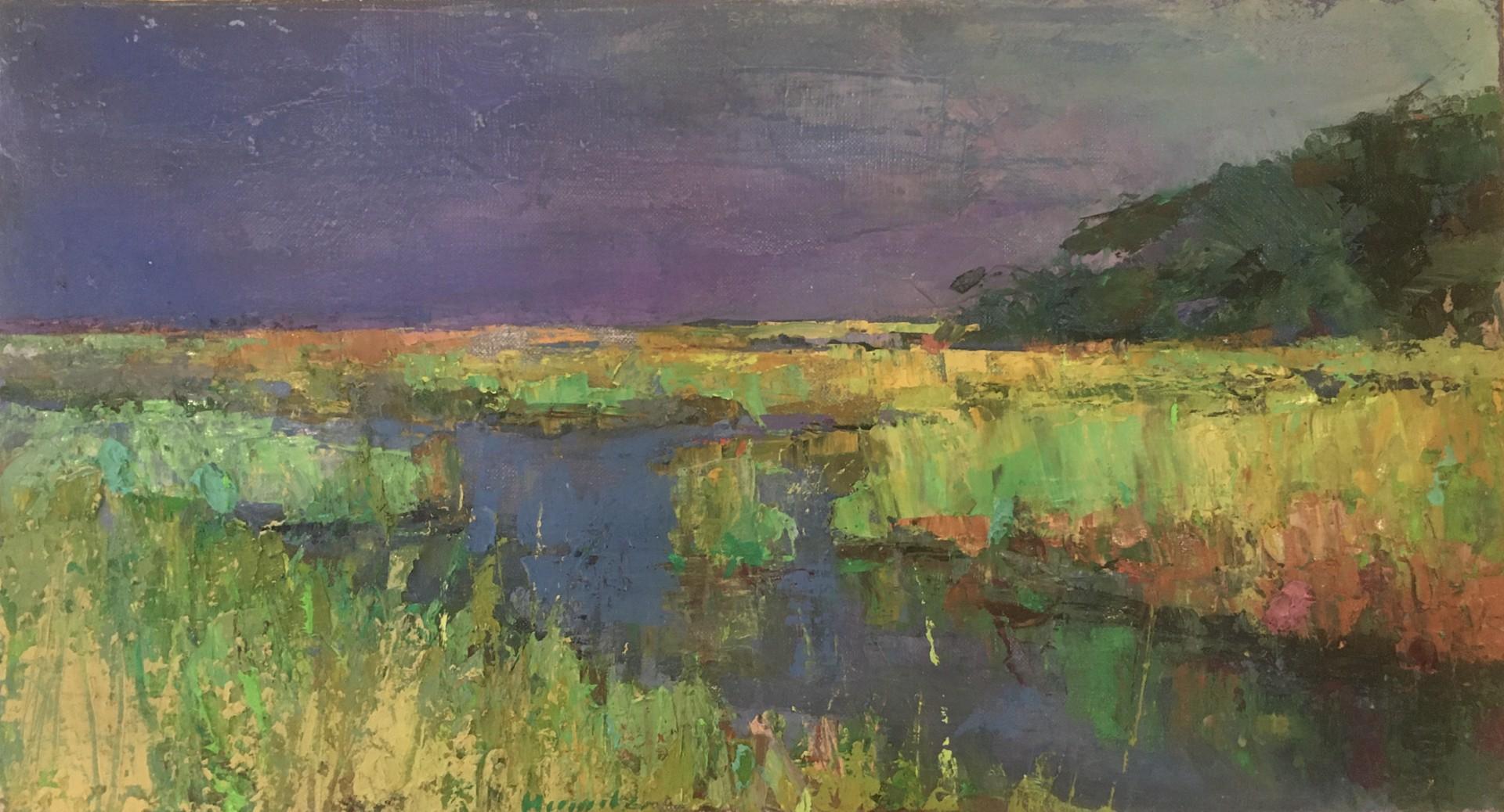 Marsh Storm by Larry Horowitz