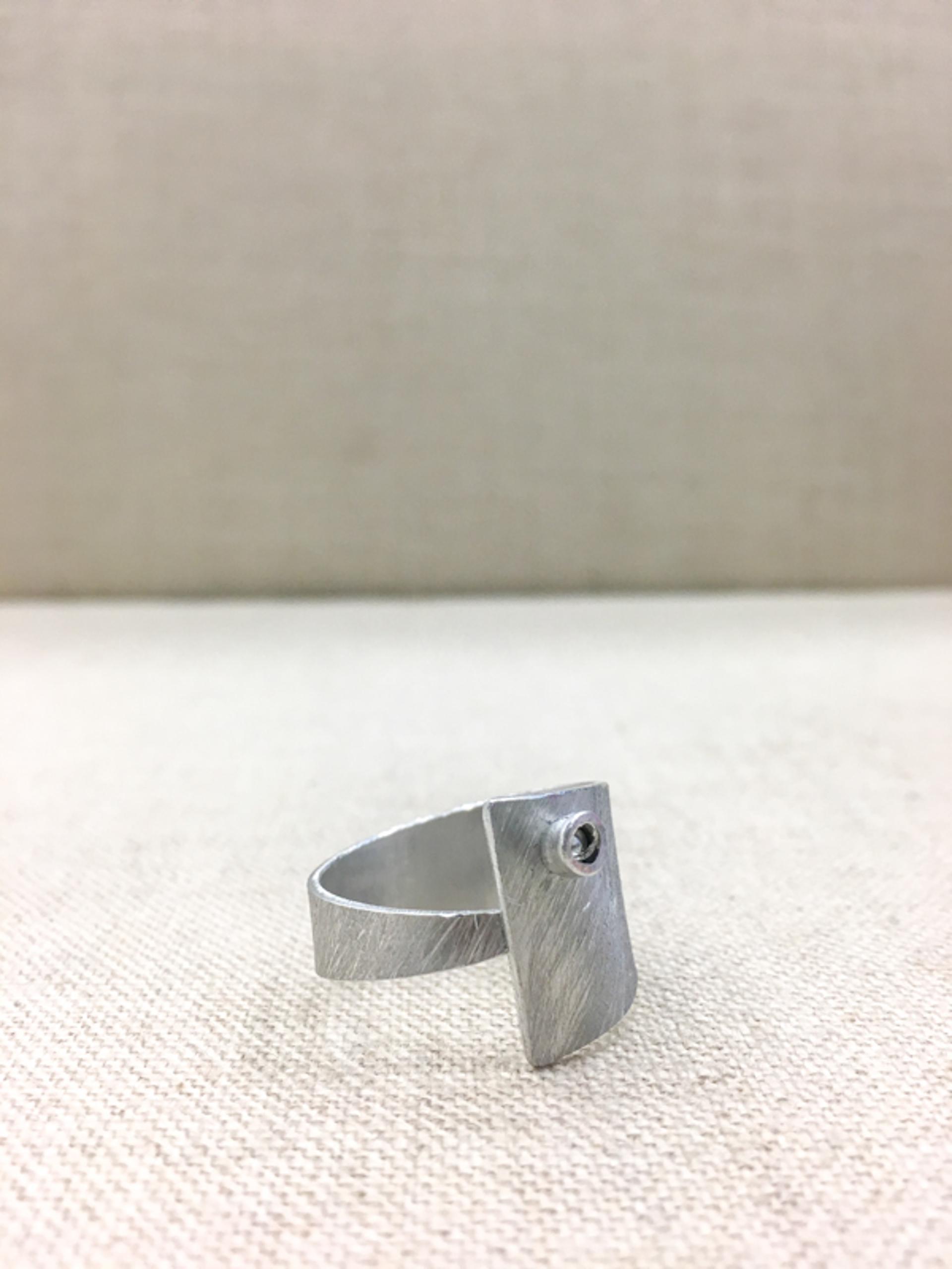 8253 Ring by Lori Paulsen