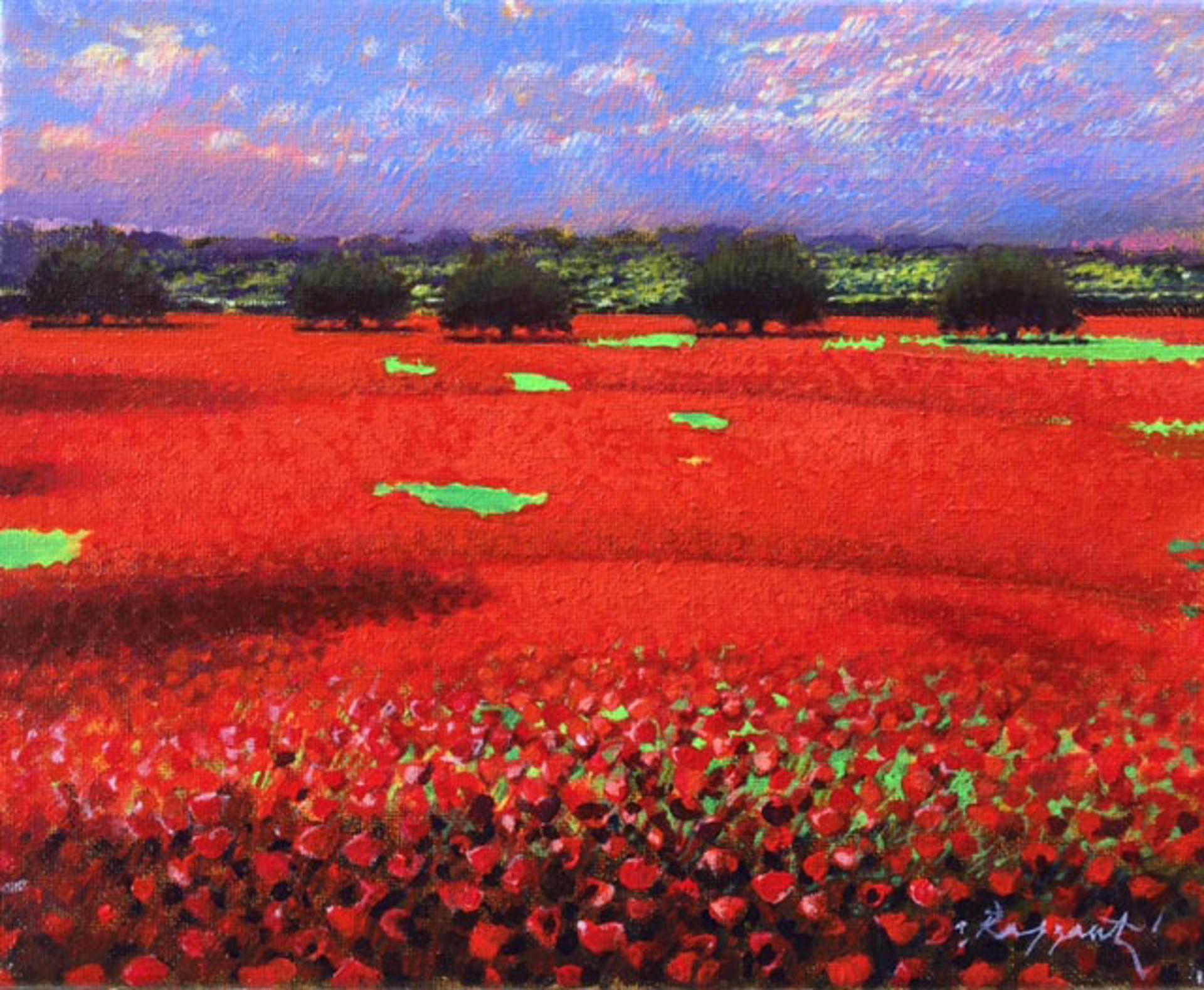 Poppy Field by Andrea Razzauti