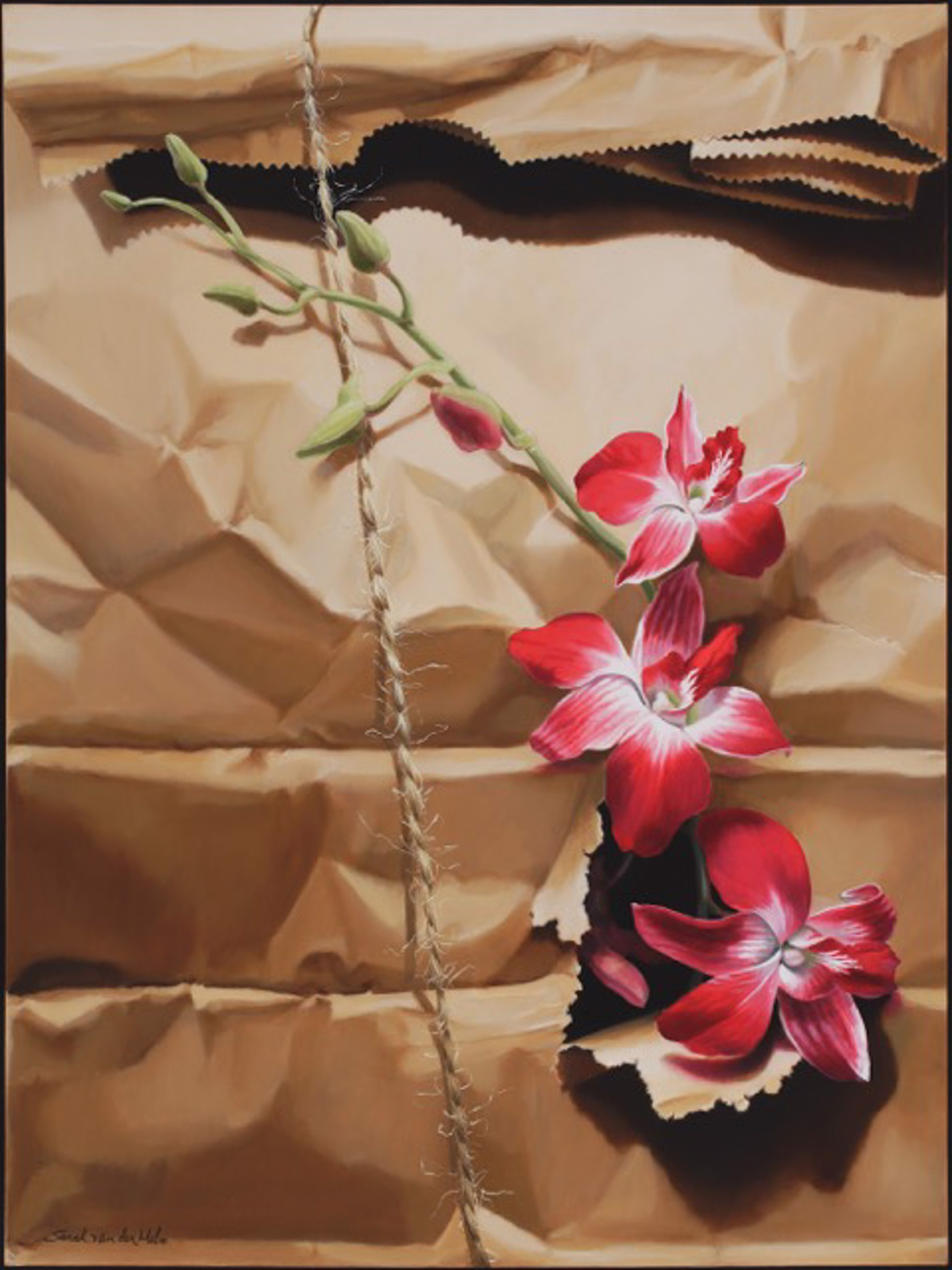 Orchids in Brown Paper Sack by Sarah van der Helm