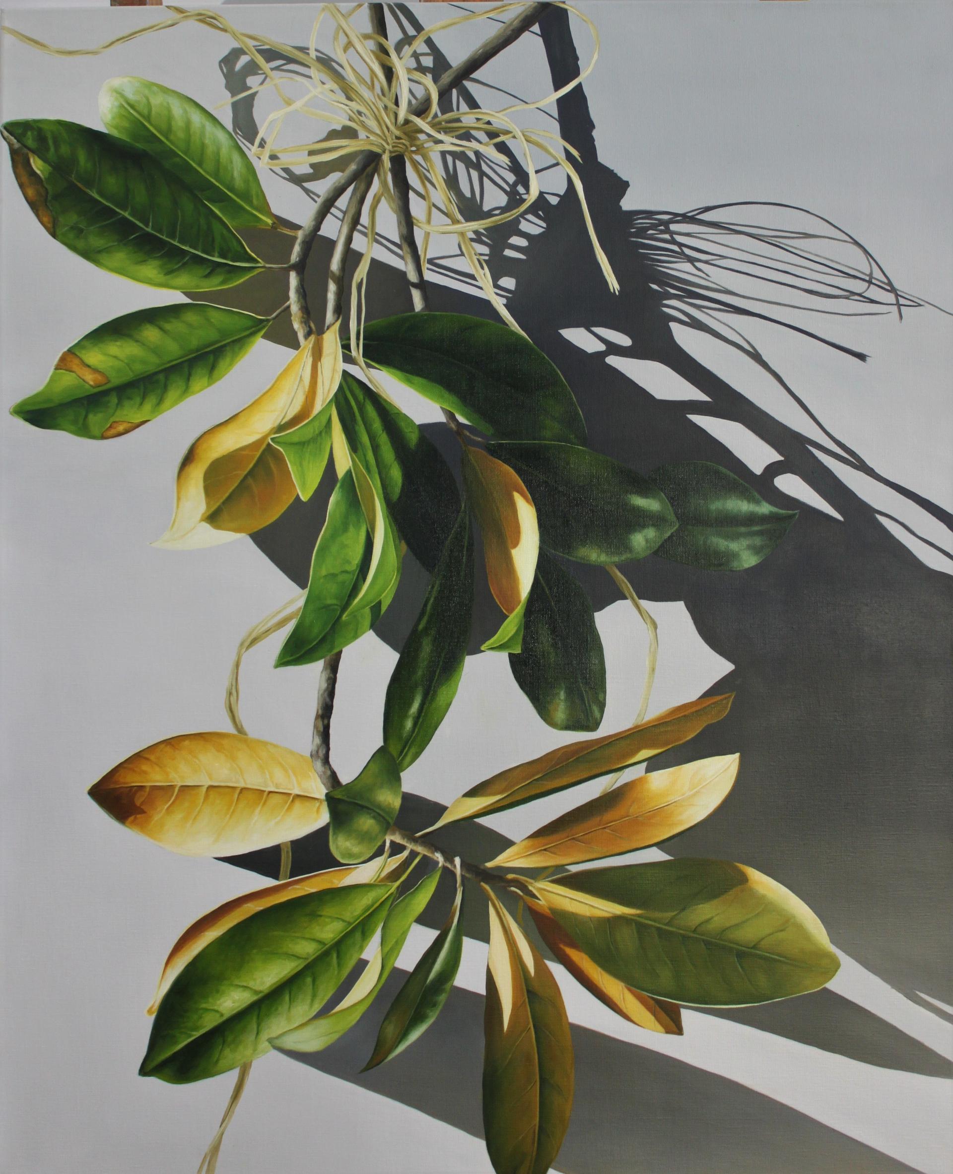 Hanging Magnolia by Loren DiBenedetto, OPA