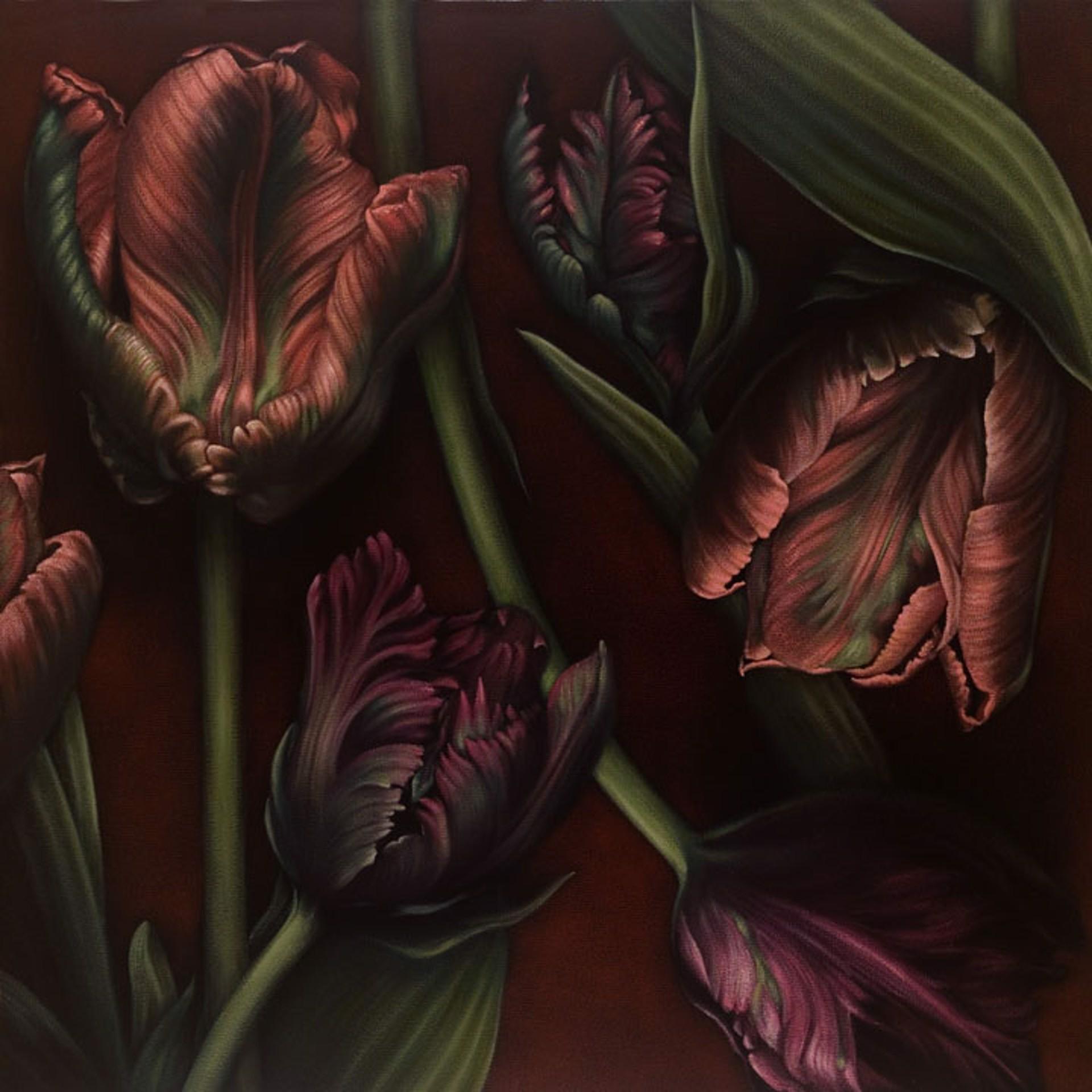 Tulips by Larissa Morais