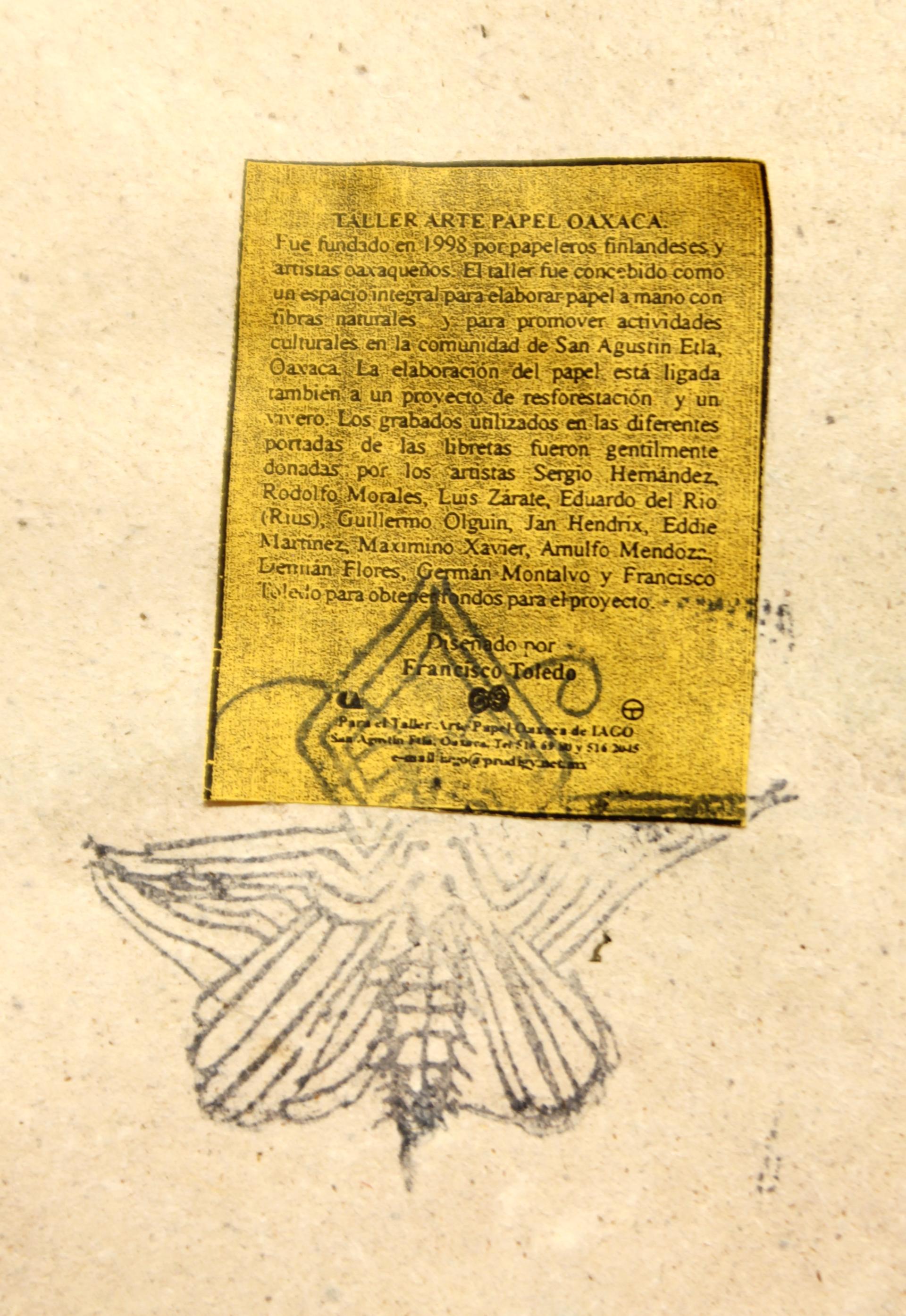 Calaveras Kite by Francisco Toledo (1940 - 2019)