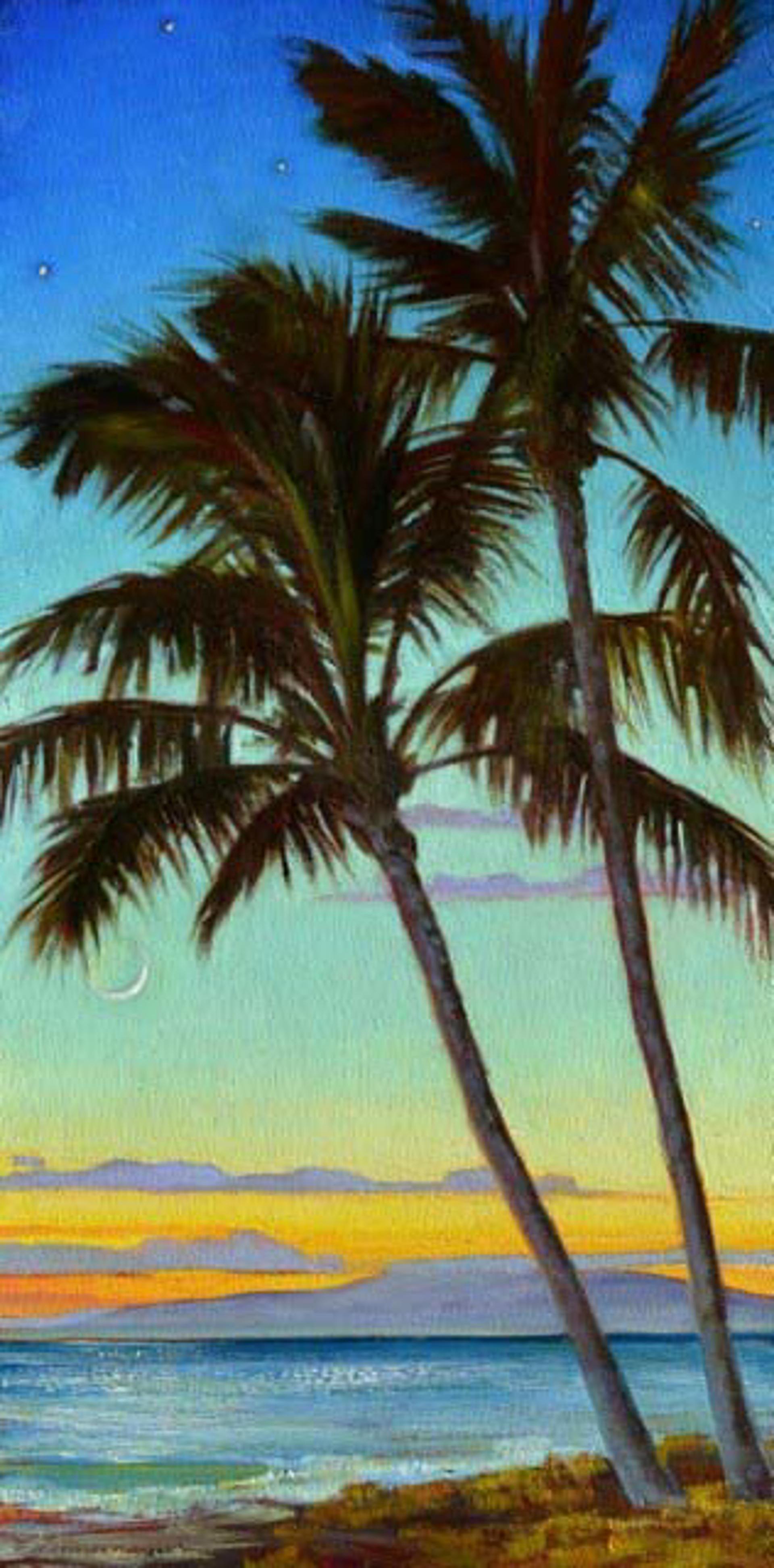 Paradise Moon by Caroline Zimmermann