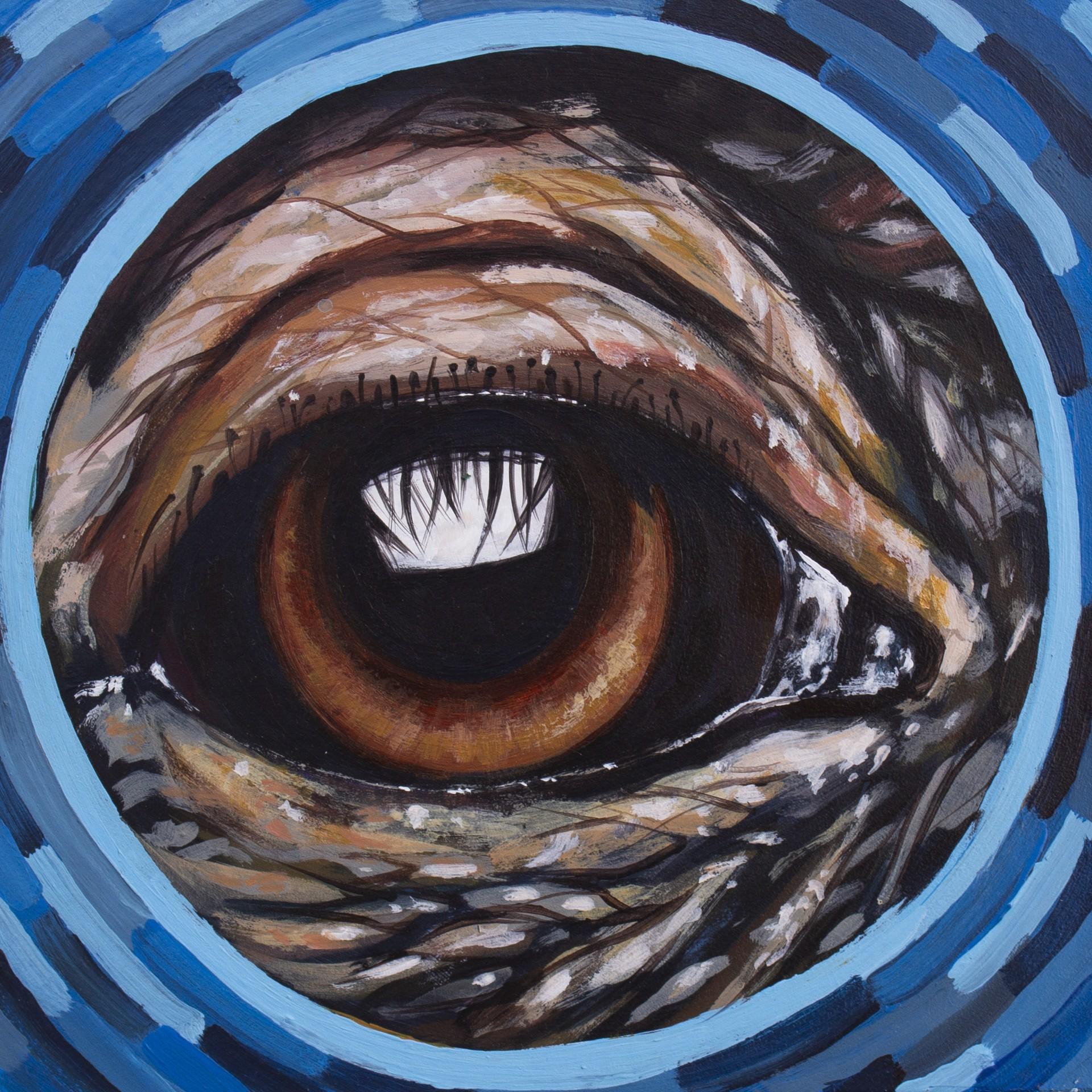 Eye Chimp by Sophy Tuttle