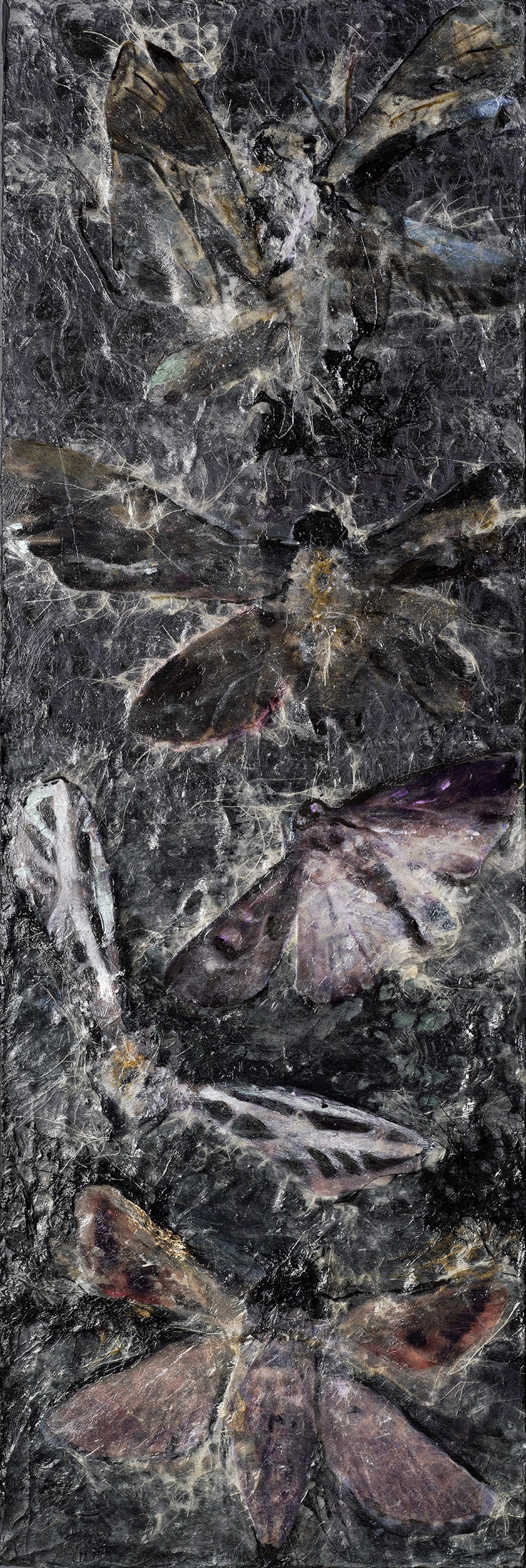Moths - Broken Flight by Rosemary Feit Covey