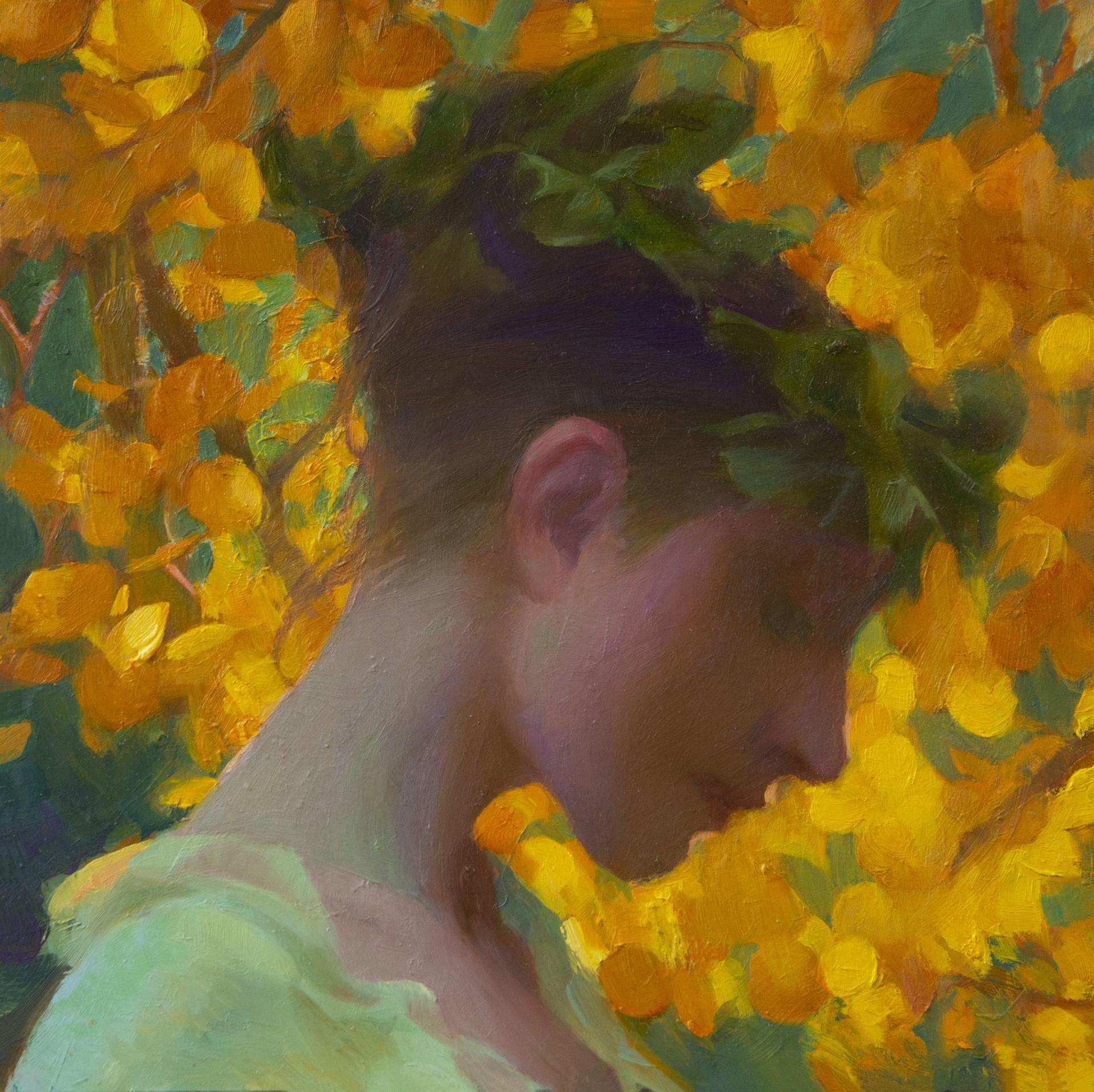 Autumn Aspens by Adrienne Stein