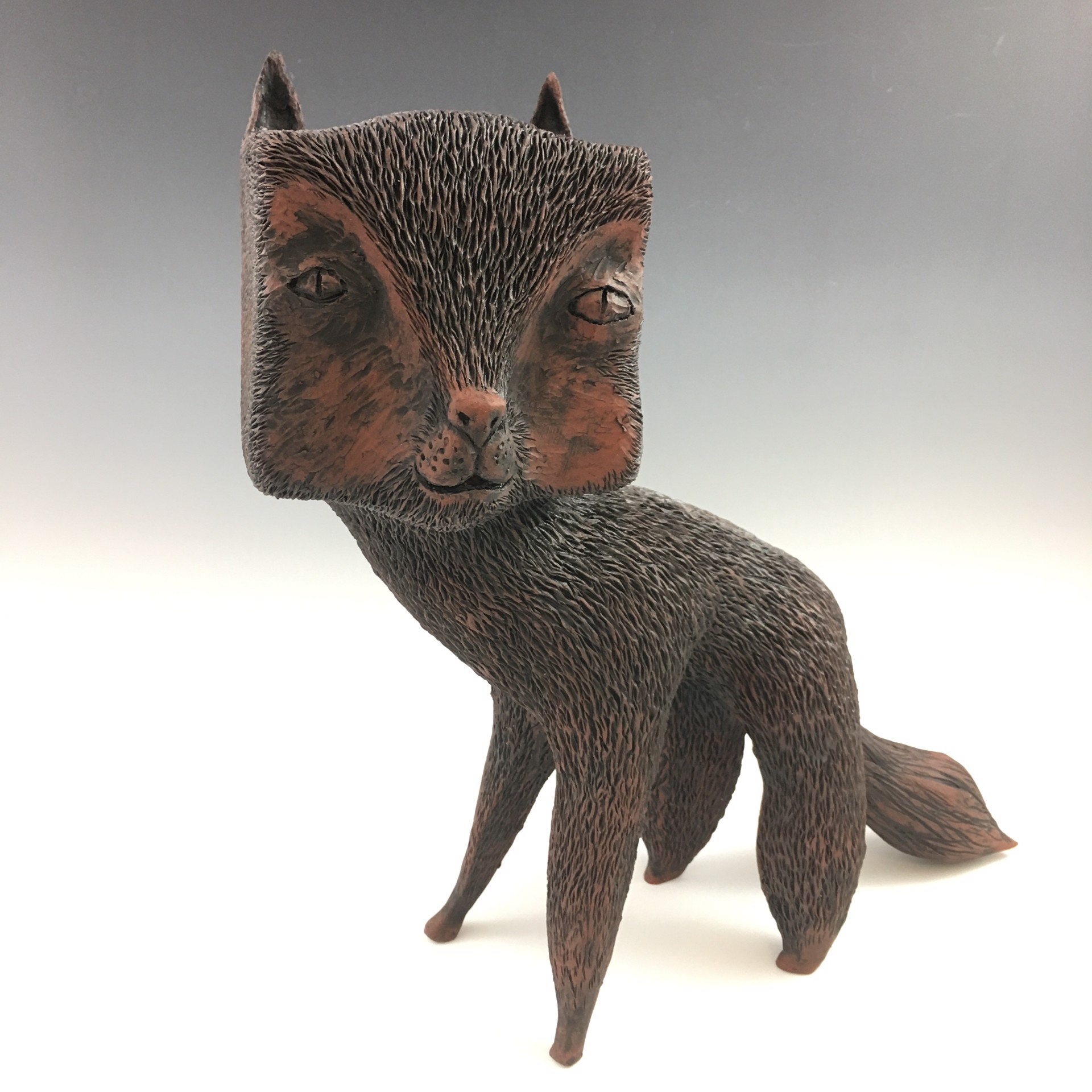 Squareheaded Cat by Christopher St. John