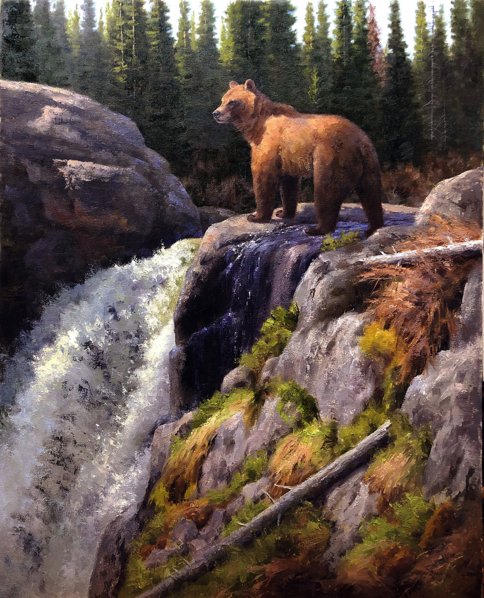 Above the Falls by Dwayne Brech