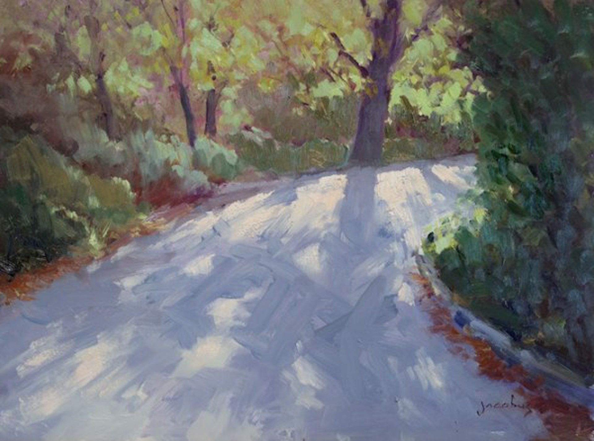 Path To Crystal Cove by Jacobus Baas