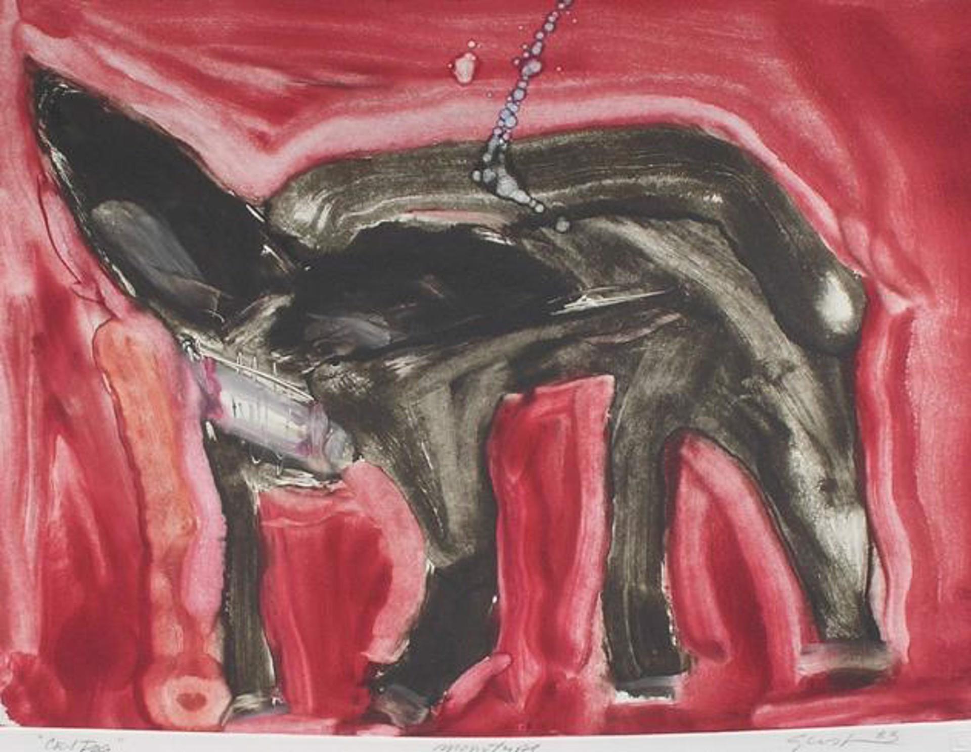 Cat Dog by Bill Gersh
