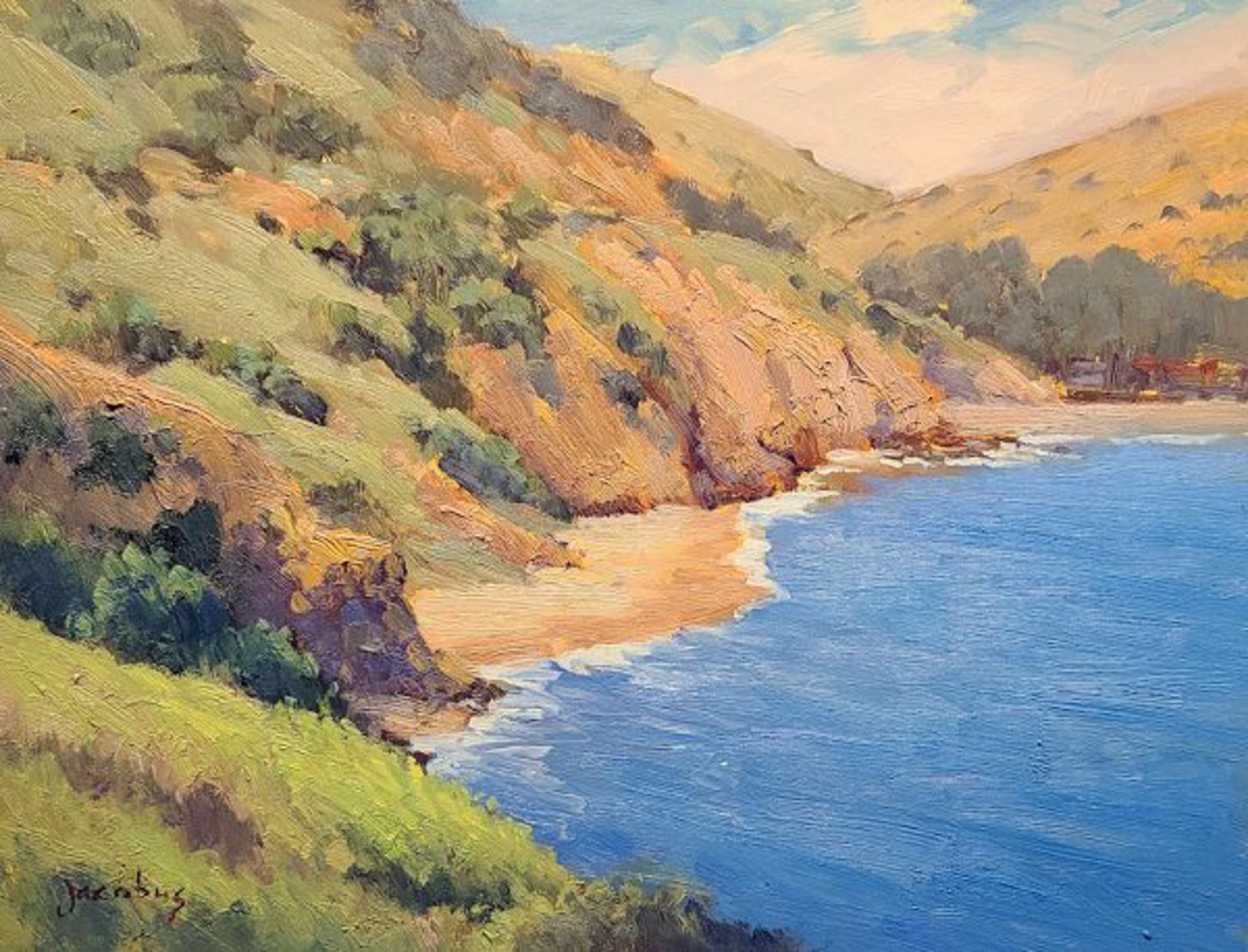 Hidden Beach On Catalina by Jacobus Baas