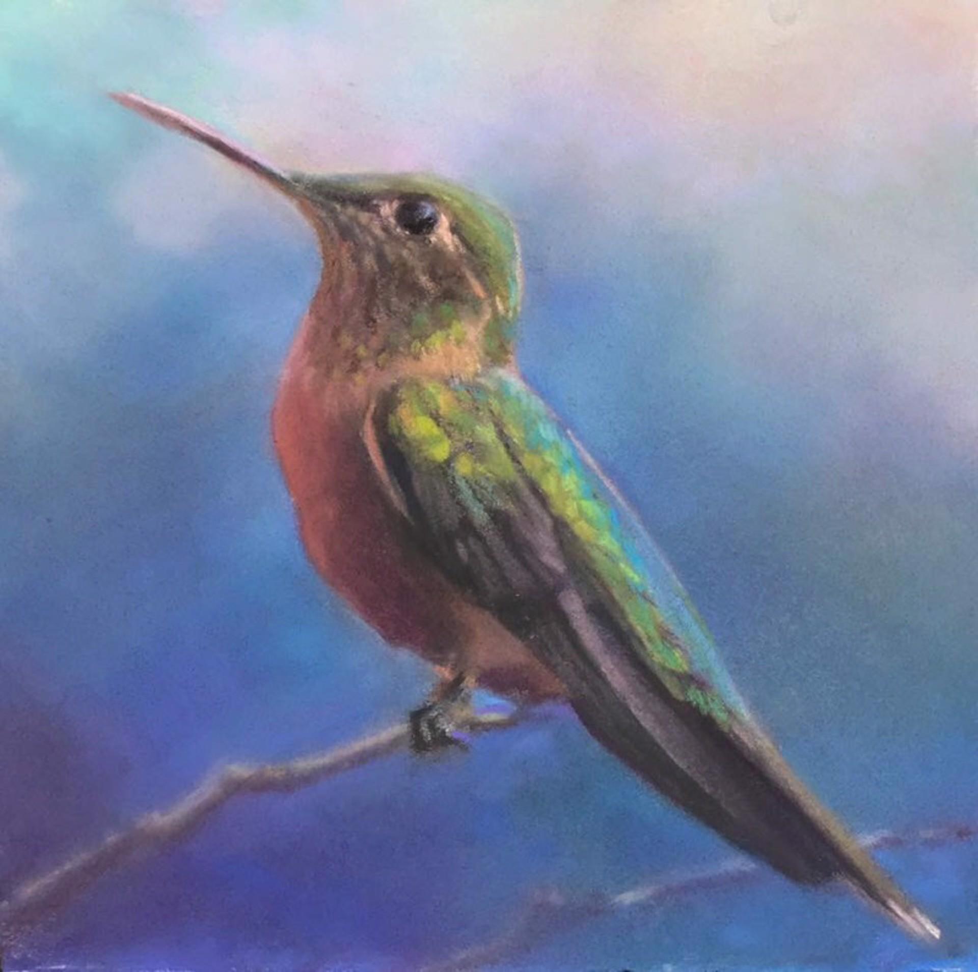 Hummingbird commission 1 by Bruce A Gómez