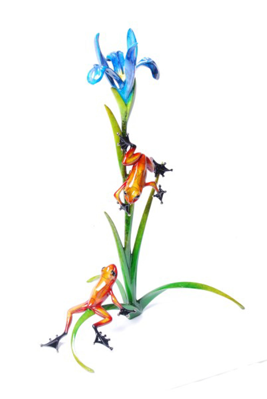 Iris by The Frogman