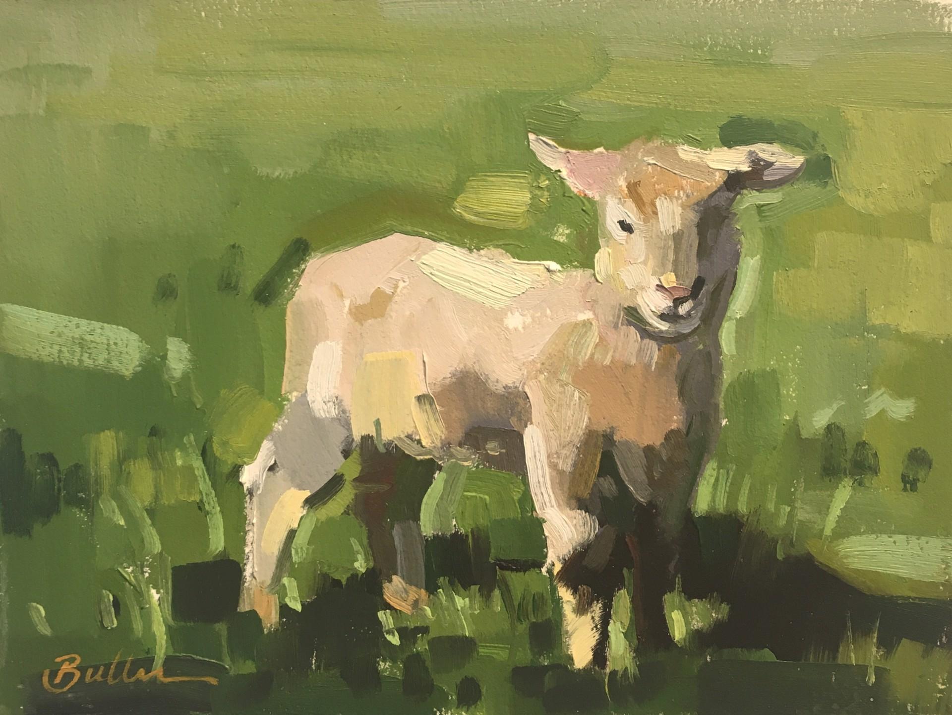 Spring Lamb by Samantha Buller