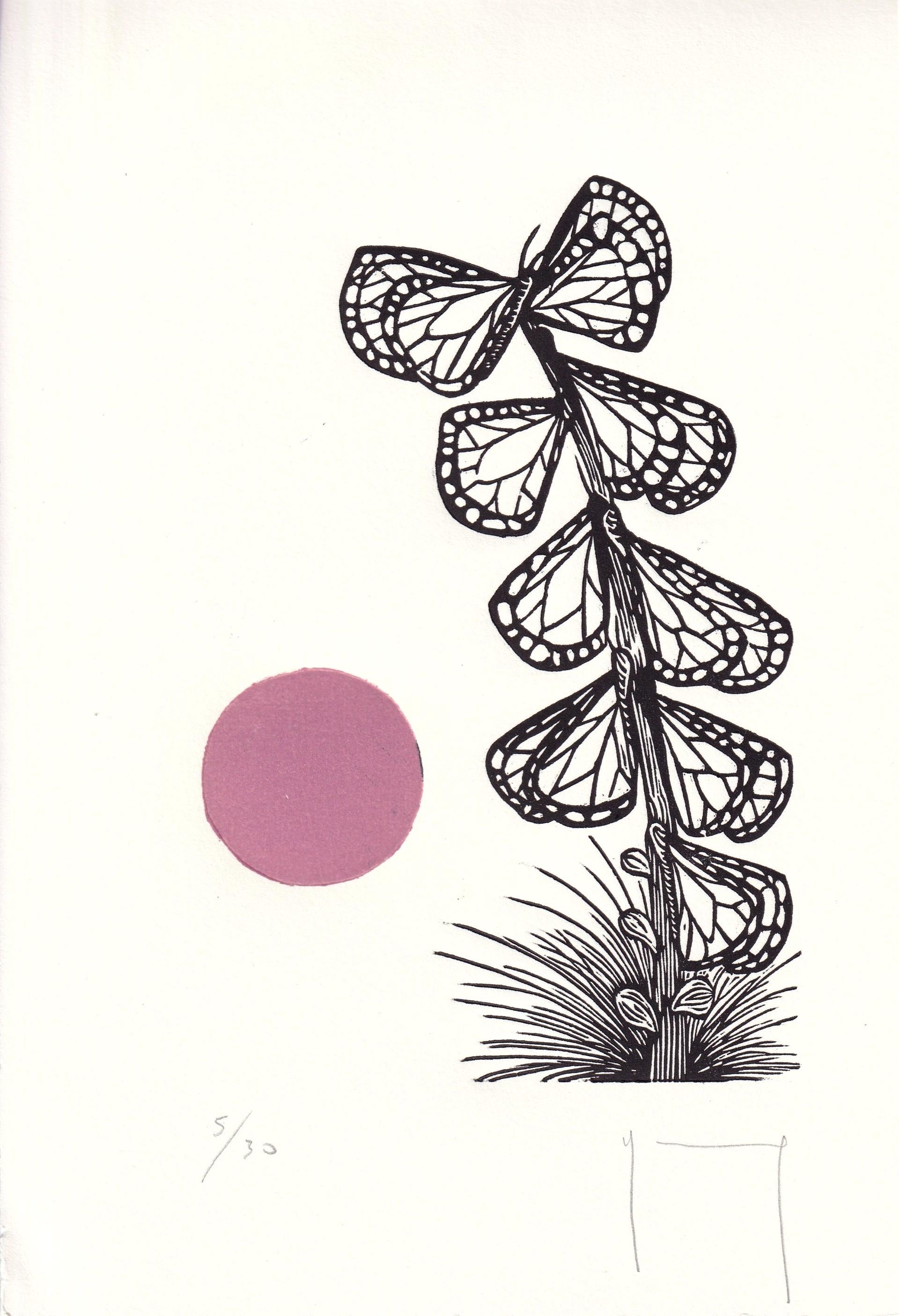 Serie Sol (Mariposas) by Miguel Jimenez Martinez