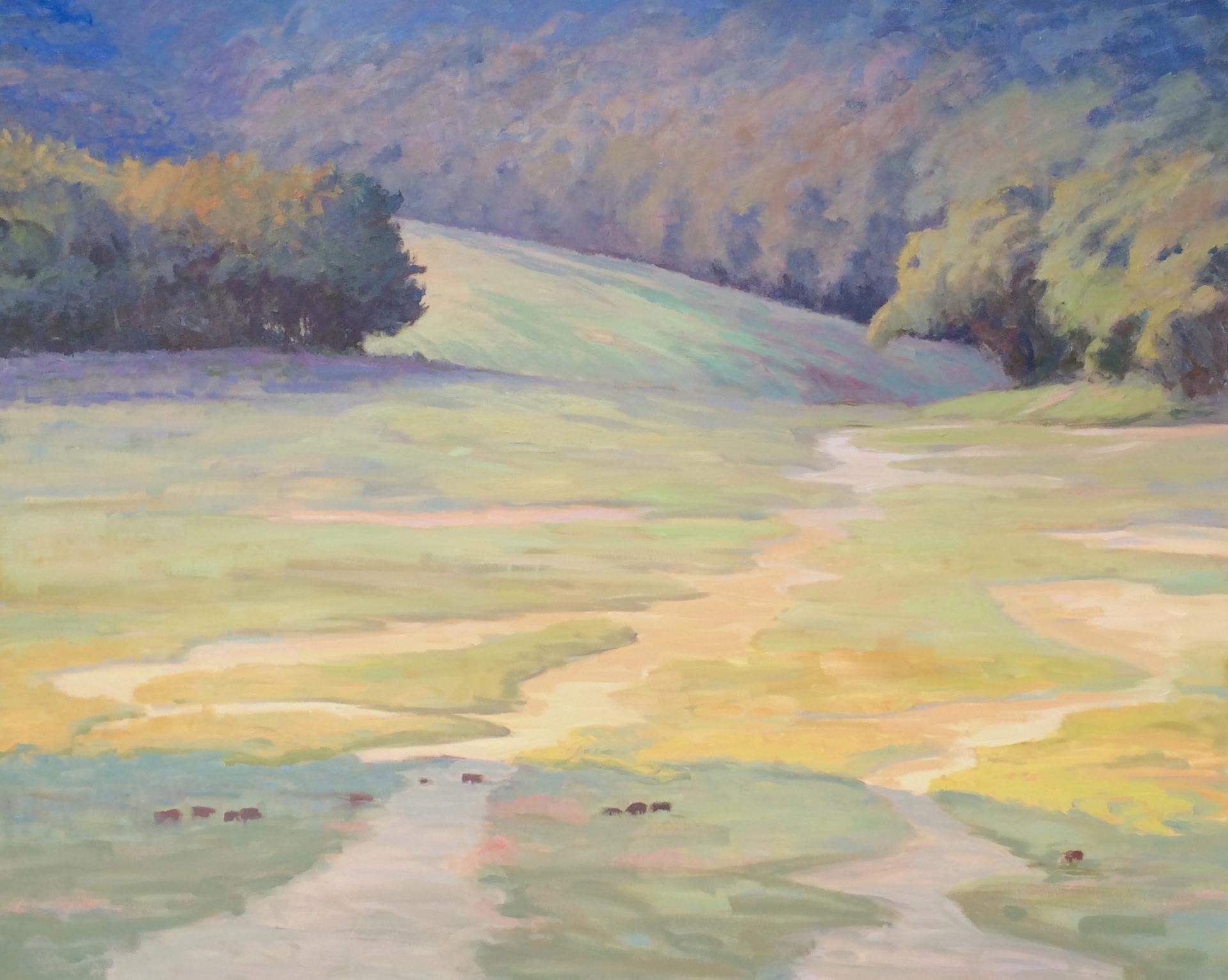 Mountain Cove by Joe Mullican