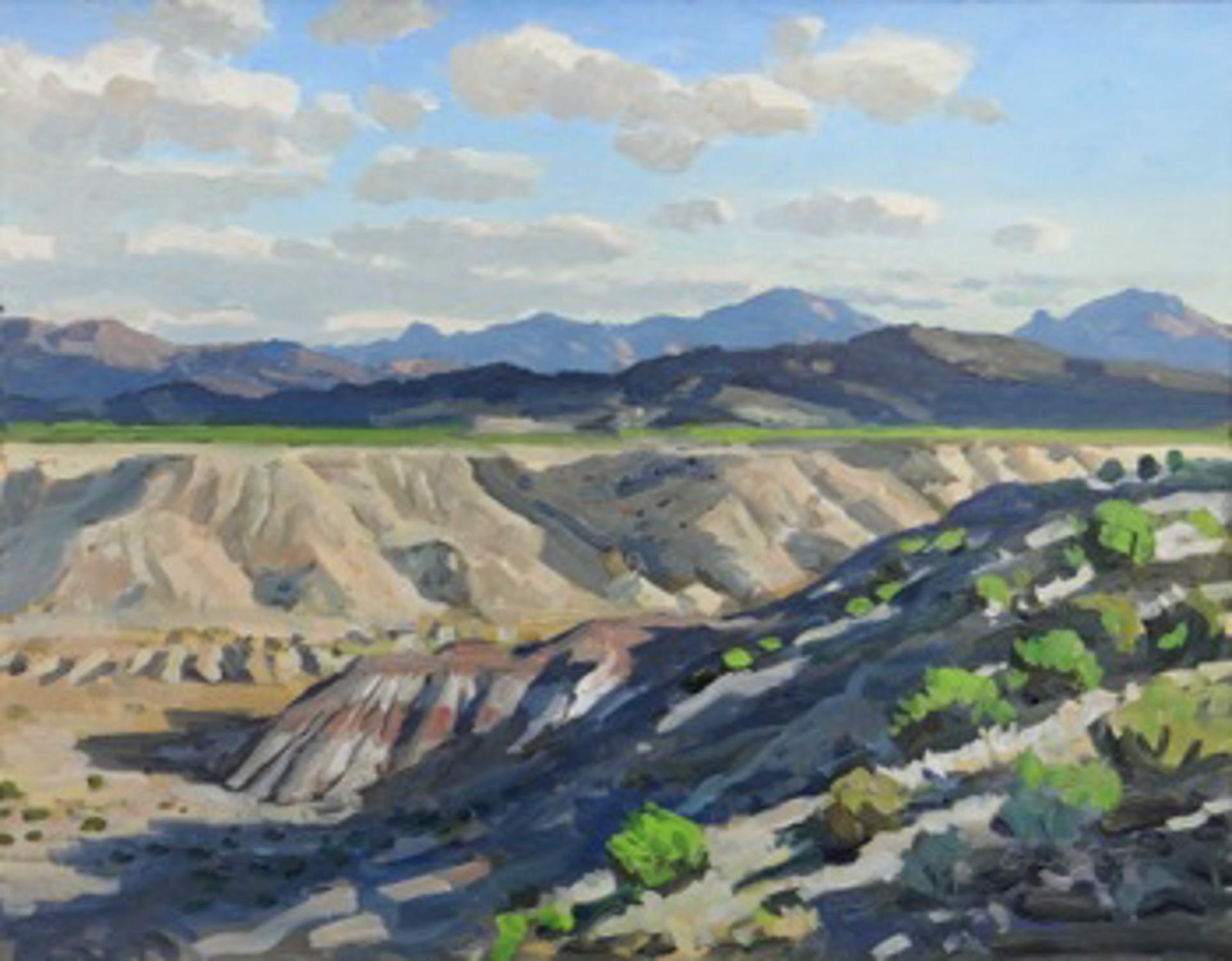 Painted Desert Near Maverick Junction, Big Bend by David Caton