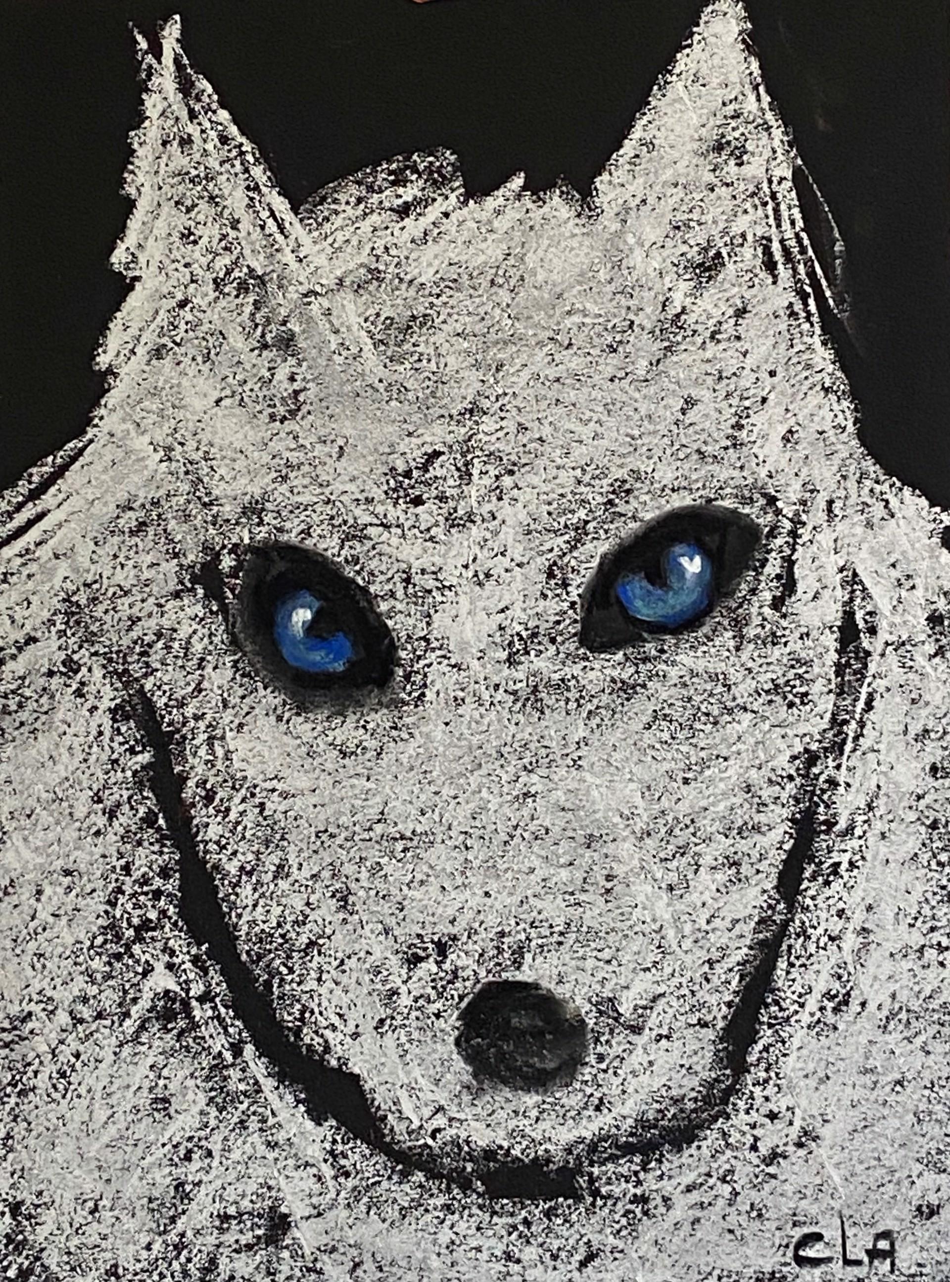 Small White Wolf by Carole LaRoche