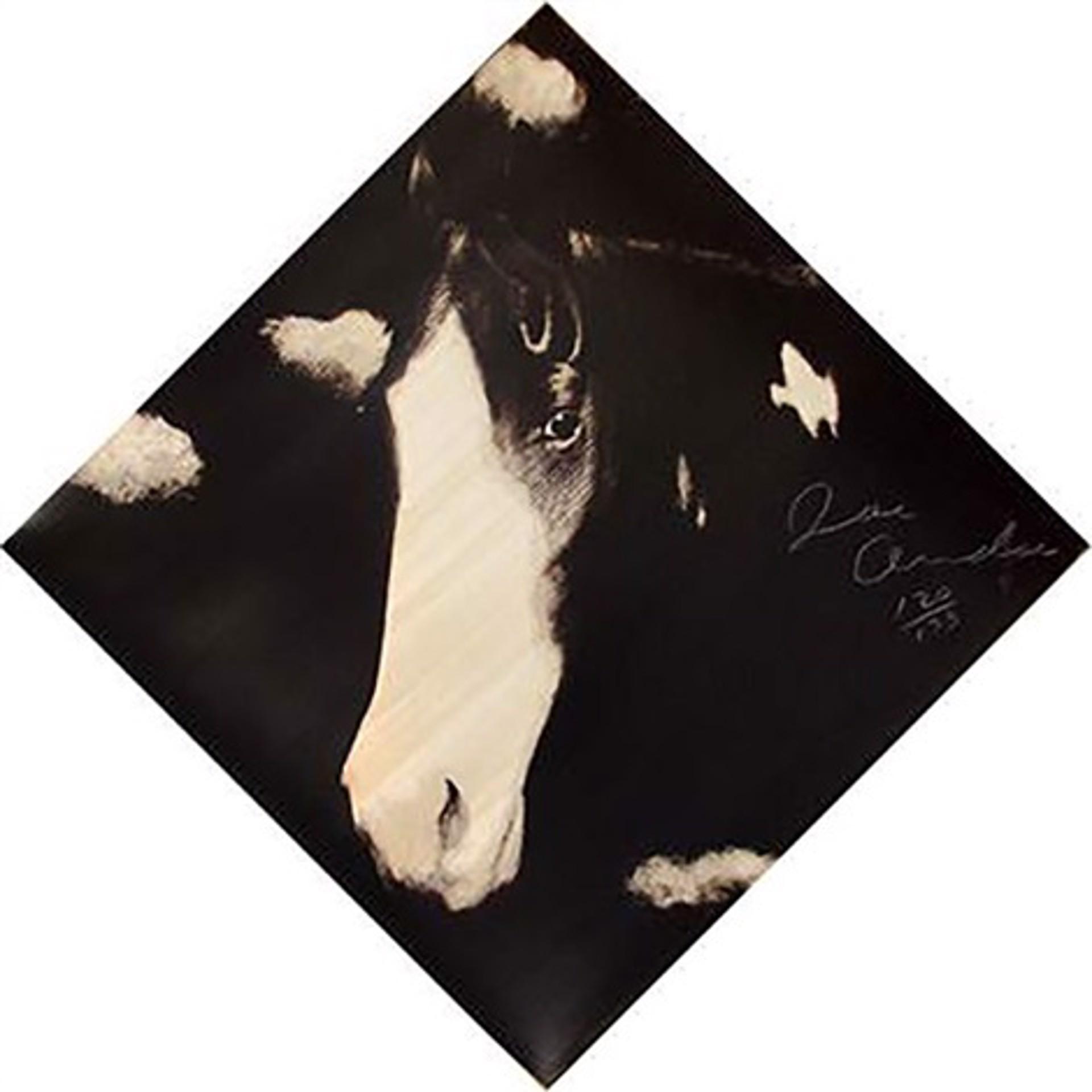 Two Horses, 1  by Joe Andoe
