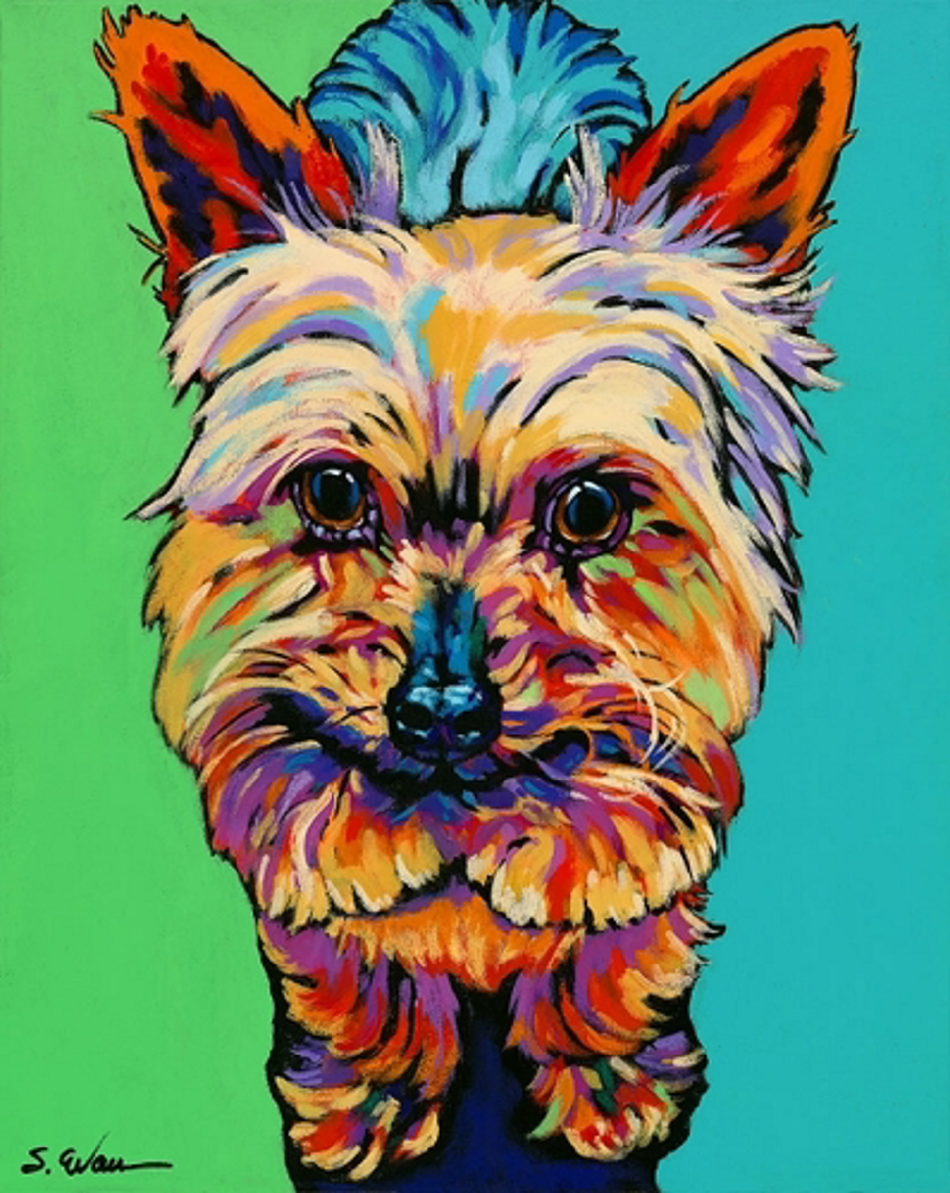 Murphy by Sally Evans -- Prints