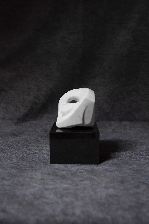White Rose by Steven Lustig