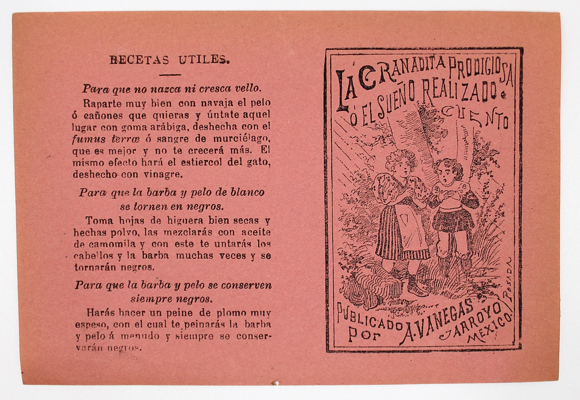 La Granadita Prodigiosa o el Sueno Realizado by José Guadalupe Posada (1852 - 1913)