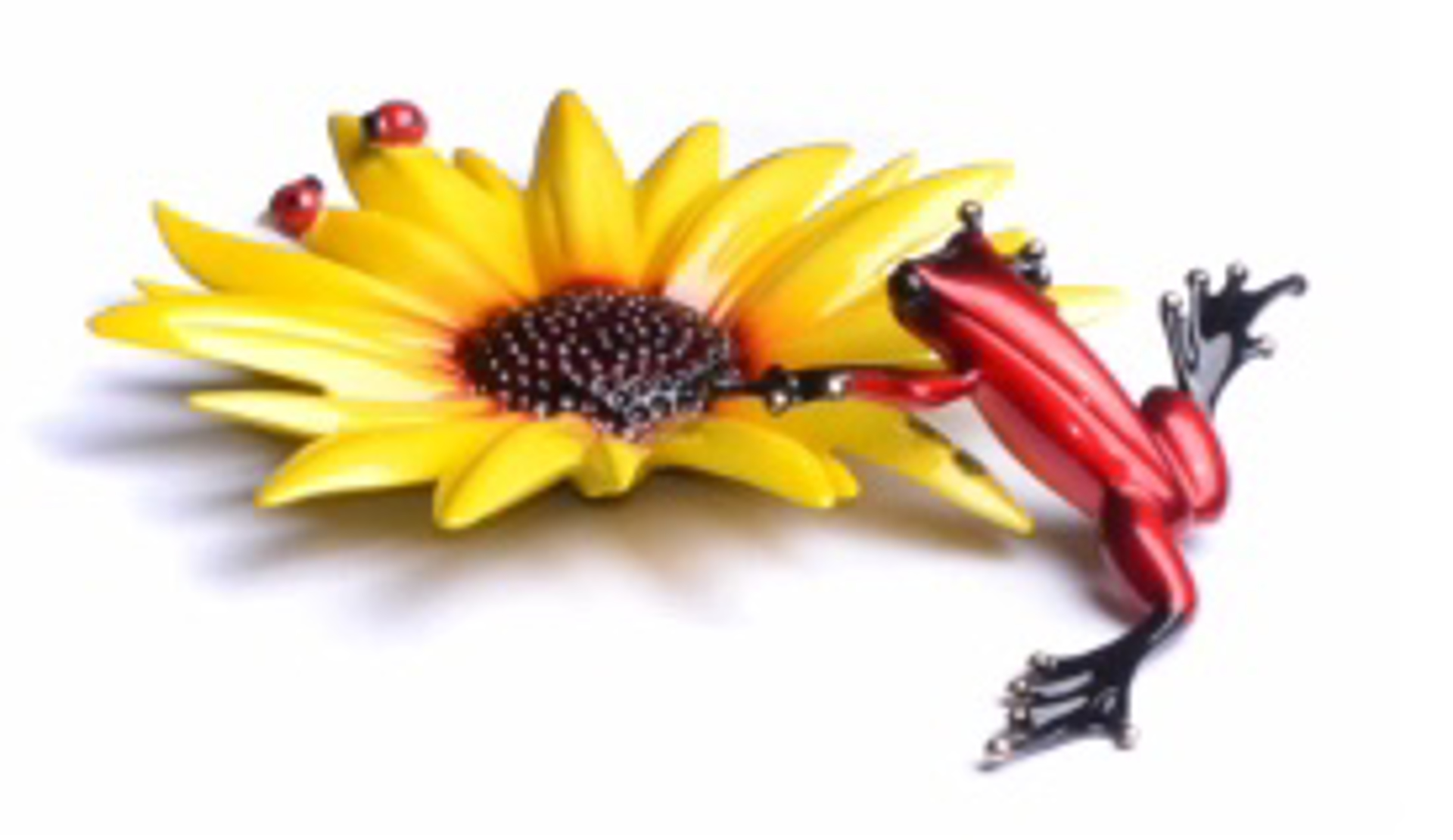 Sunflower by The Frogman