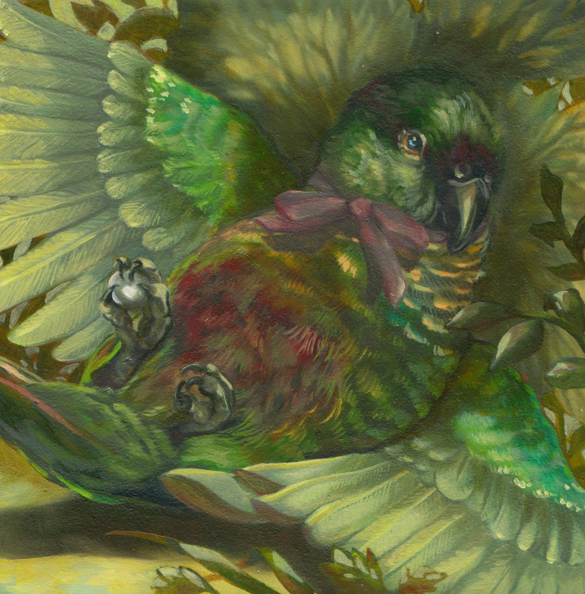Colorful Display by Rhea O'Neill