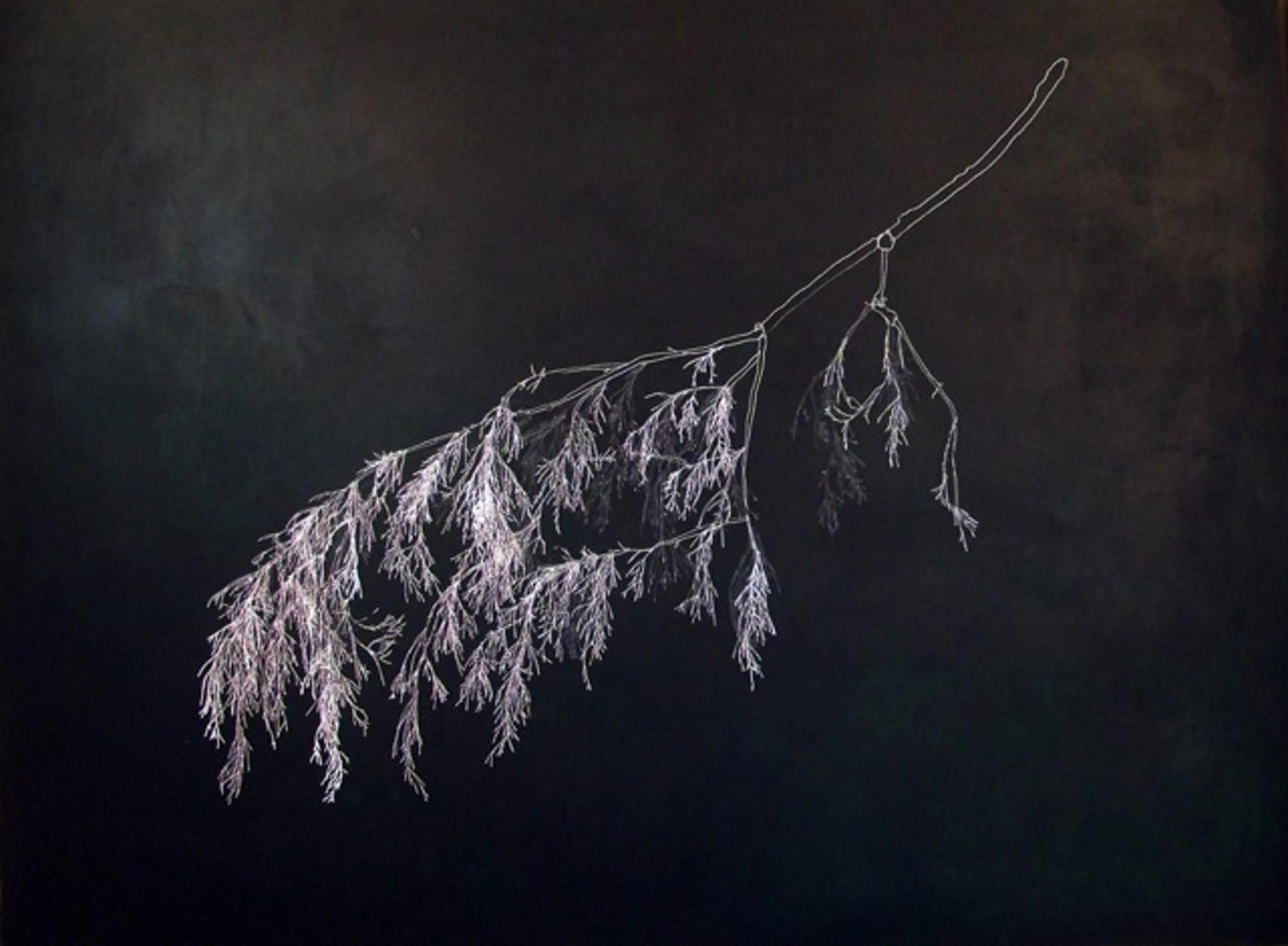 4,450 (Parts of a Twig) by John Adelman