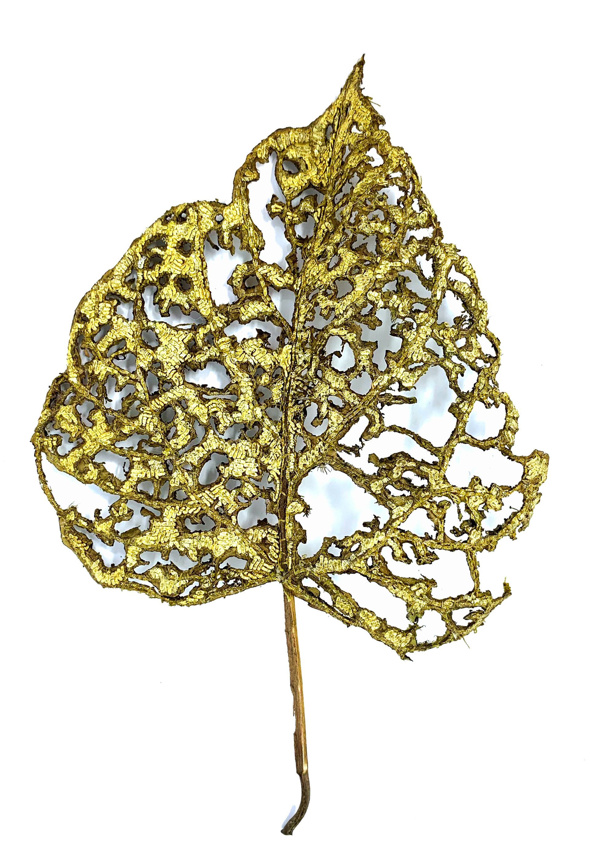 The Impermanence of Life: Mulberry Leaf I by Tiao Nithakhong Somsanith