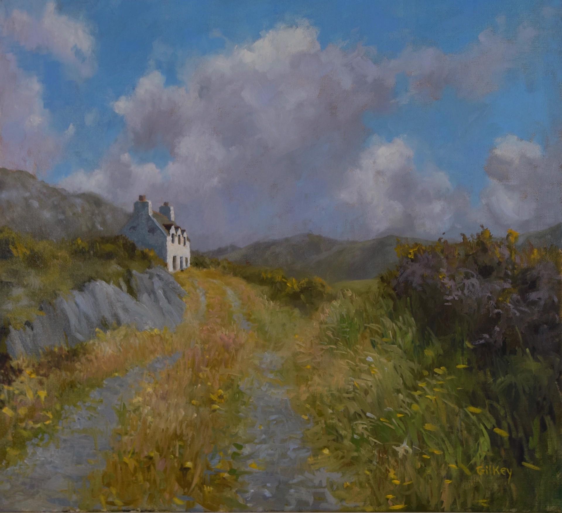 Summer in West Cork by Sue Gilkey
