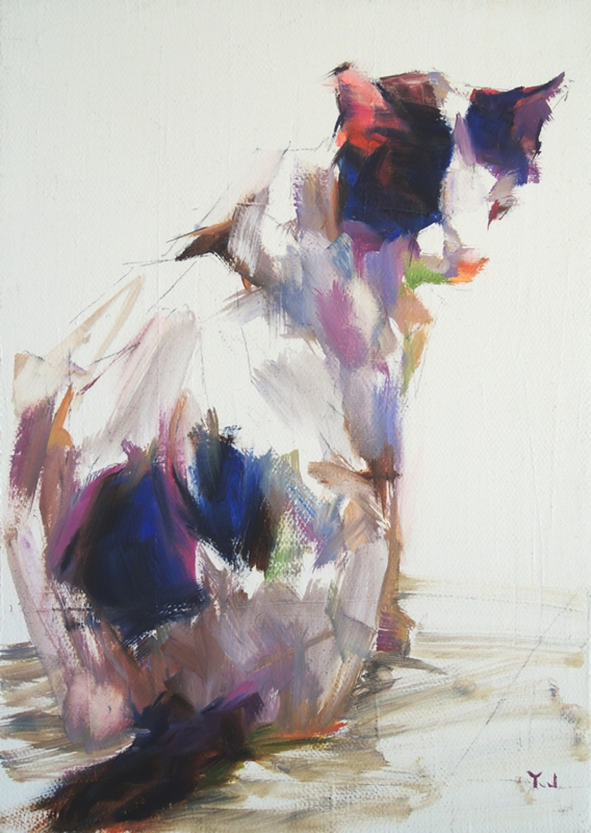 Rocky Color Study 3 by Yael Maimon