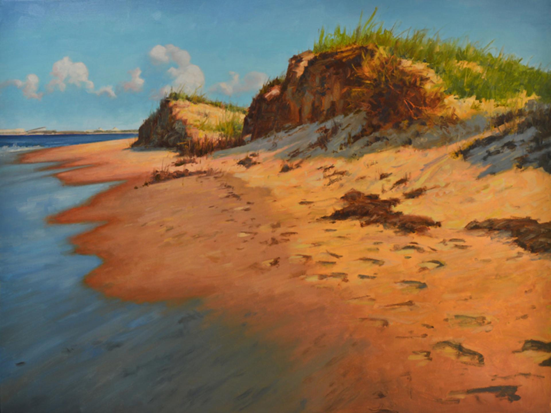 Along the Shore by Steven S. Walker