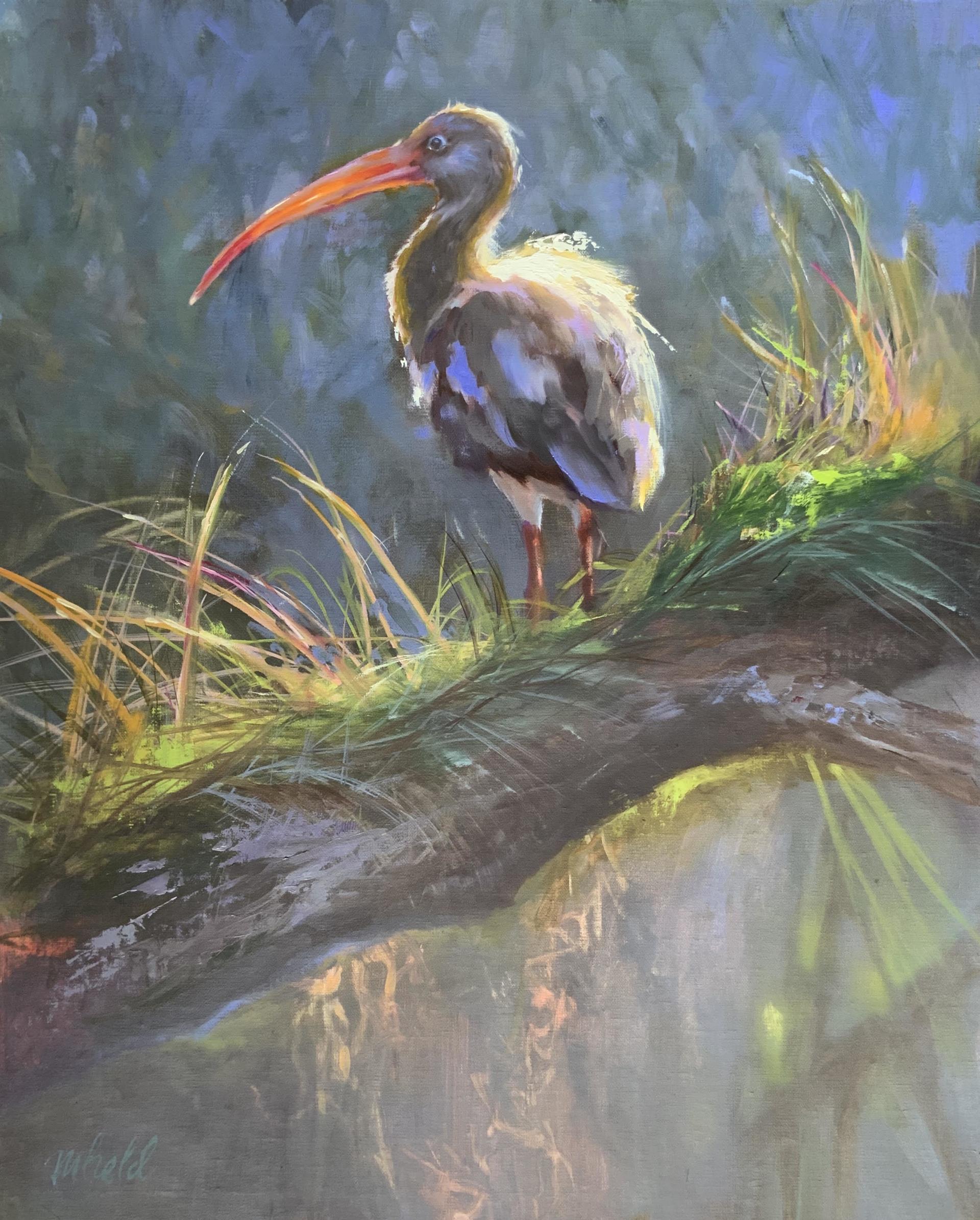 Morning Misty Ibis on Wekiva by Michelle Held
